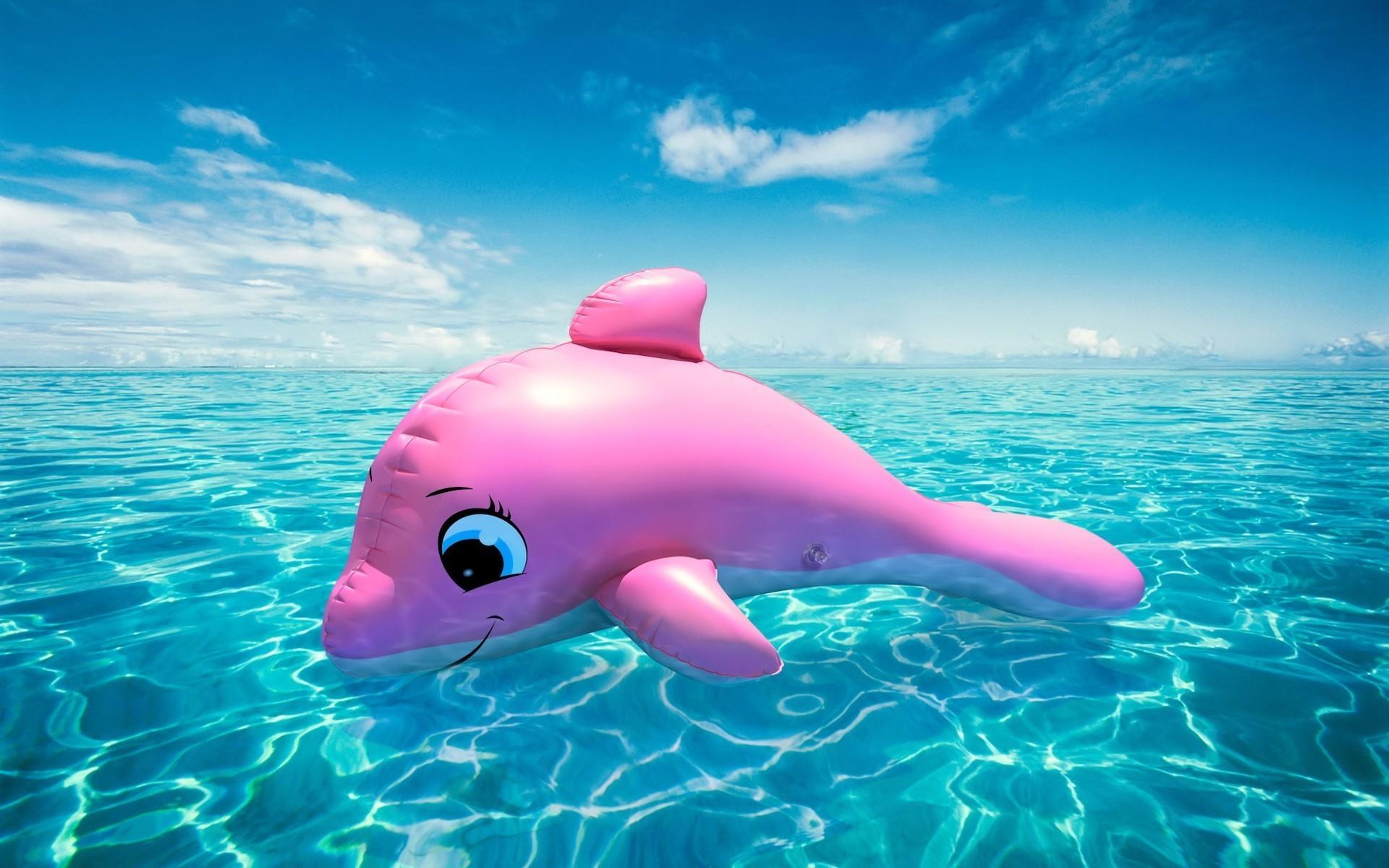 desktop pink dolphins images dowload