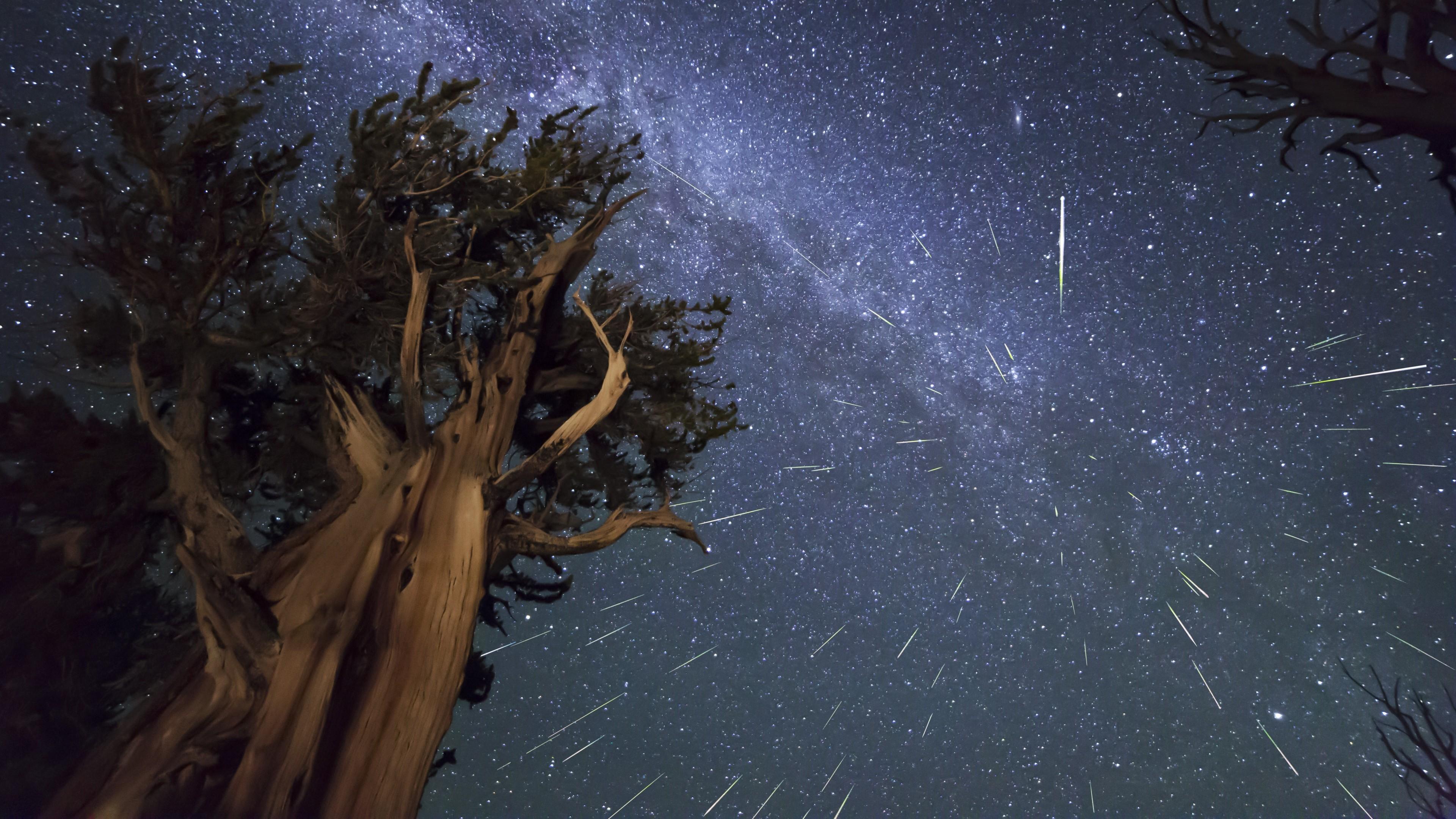 Preview wallpaper meteors, perseids, bristlecone, meteor shower 3840×2160