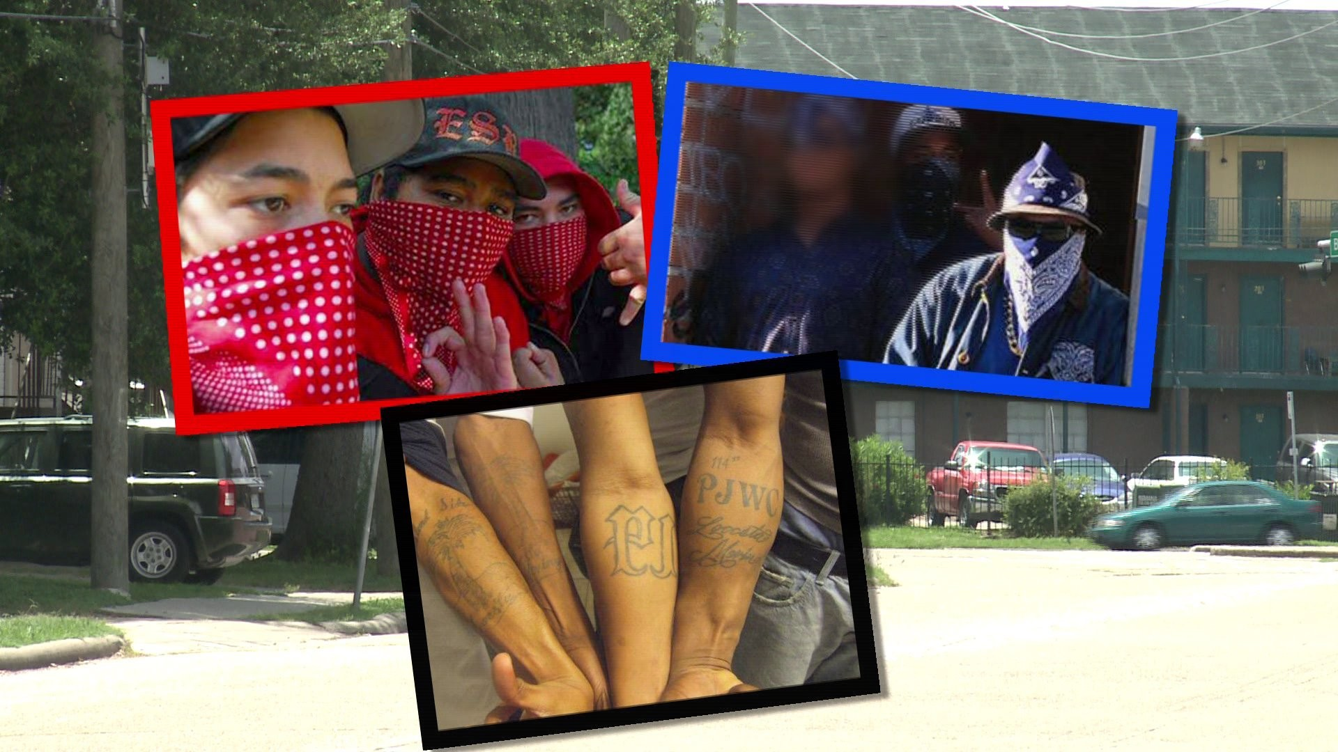 HOUSTON, TX – Bloods, Crips and creeps take notice. Harris county citizens  are fighting back.