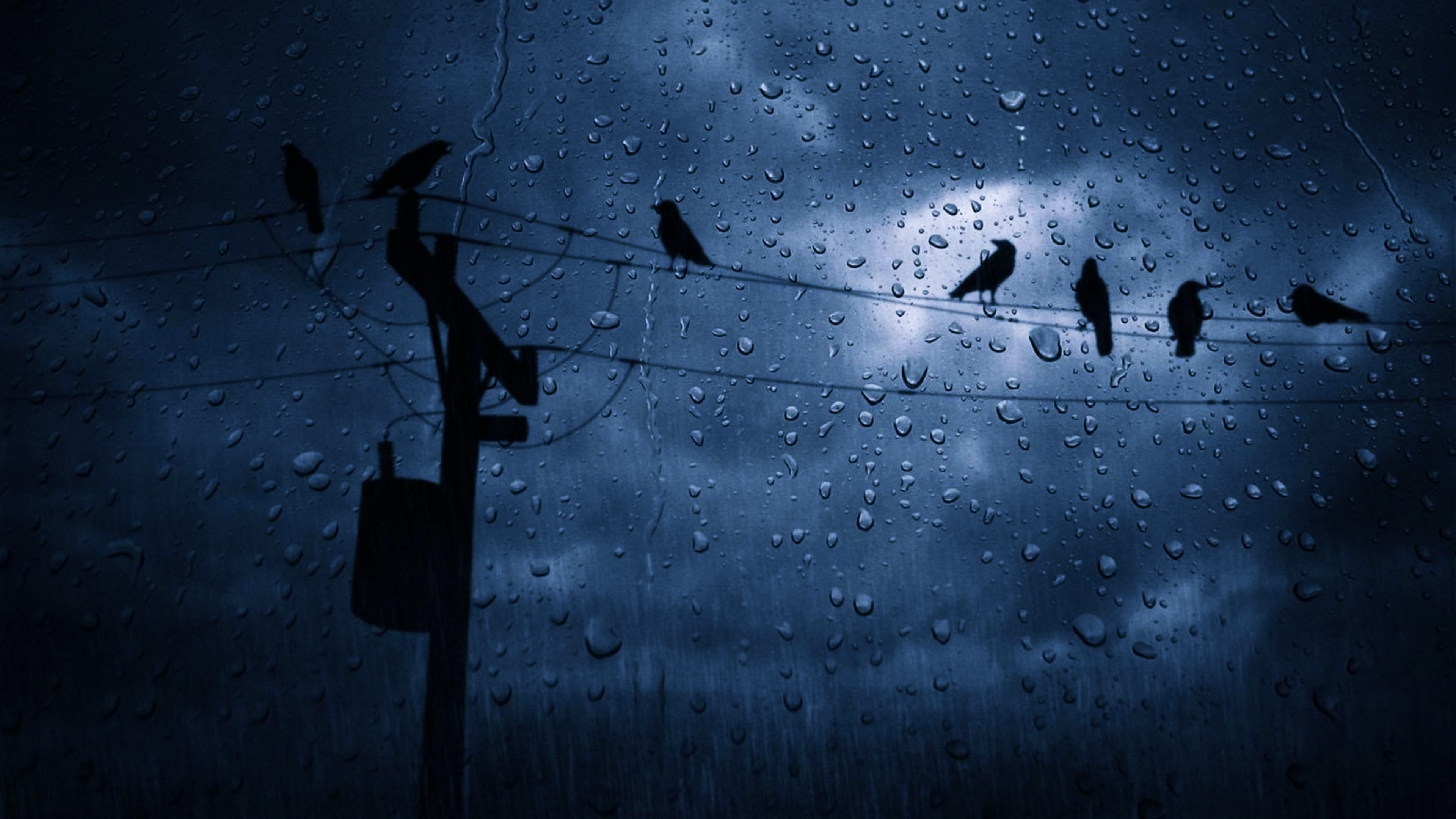 Photography – Water Drop Sky Dark Cloud Bird Rain Wallpaper