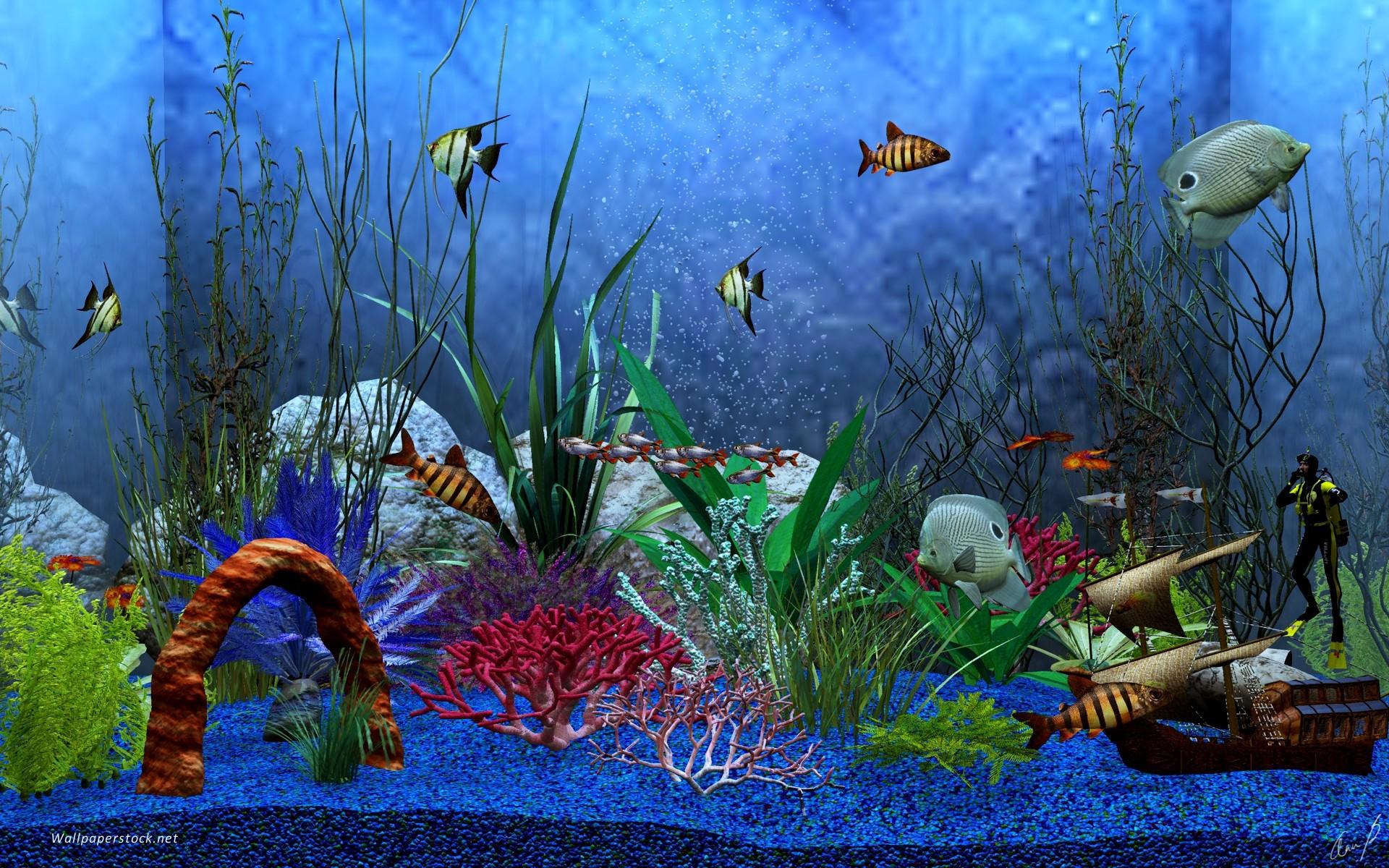 Animated Aquarium Desktop Wallpaper – www.wallpapers-in-hd.com