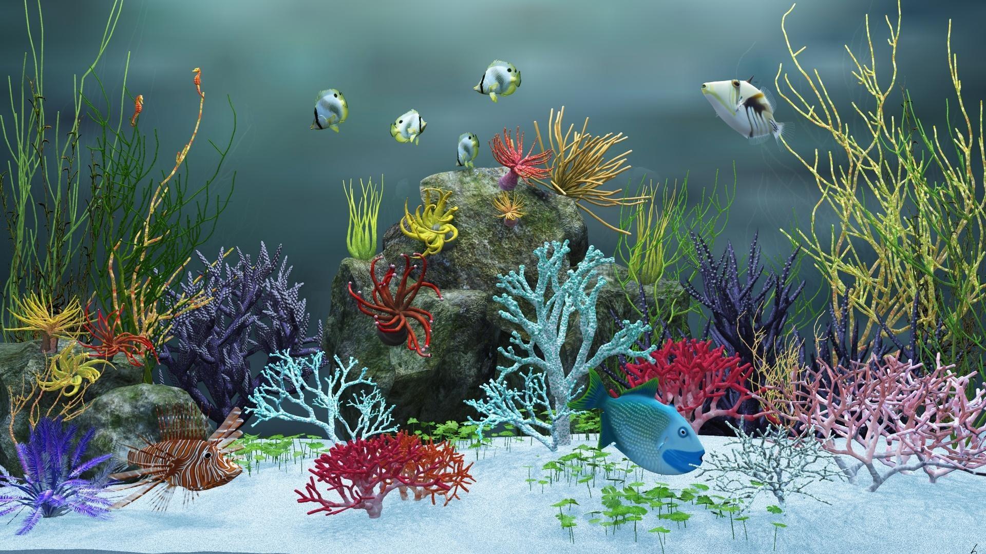 Animated Aquarium Desktop Wallpaper Windows : Aquarium desktop background