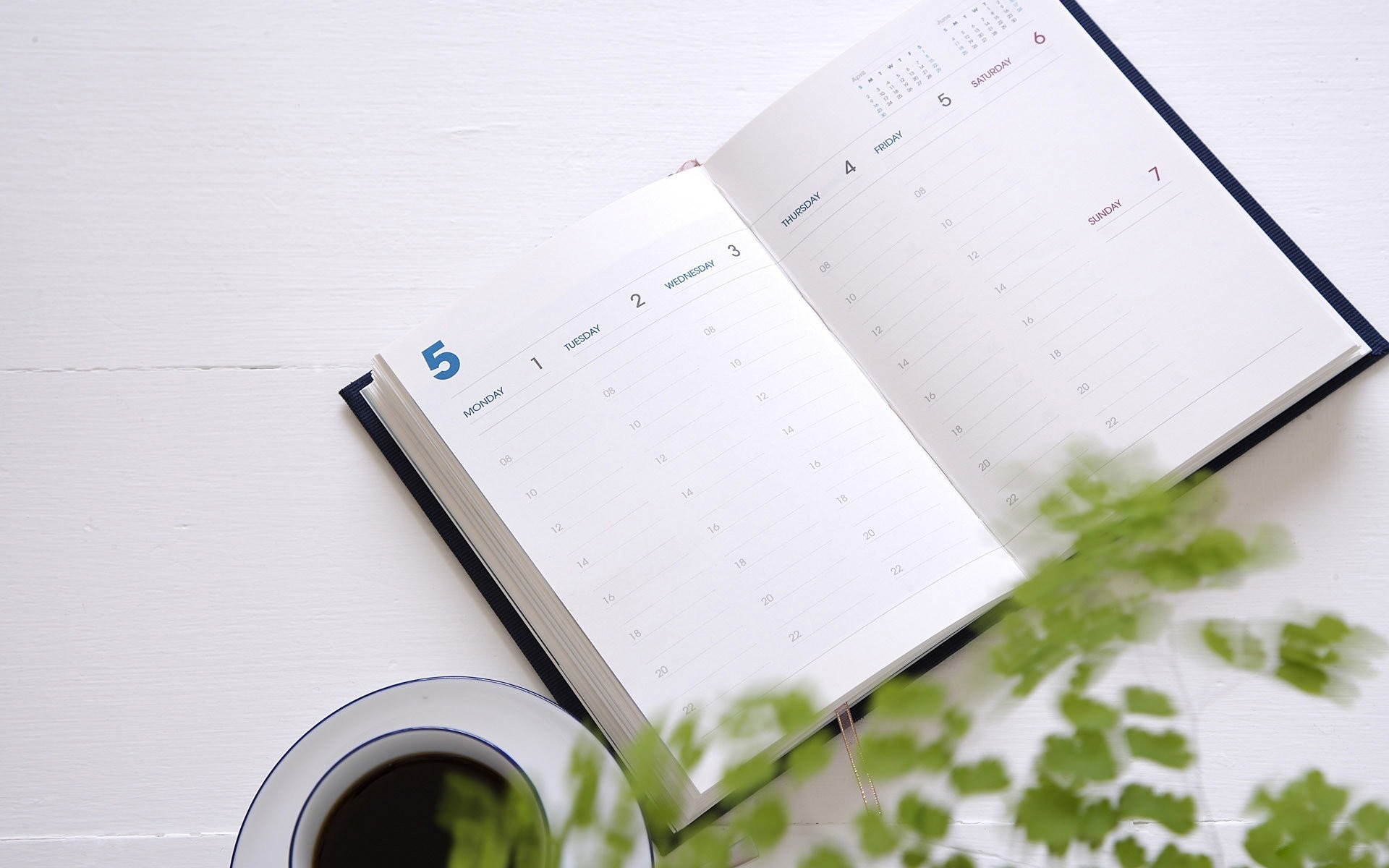 notes notebook cup coffee plant