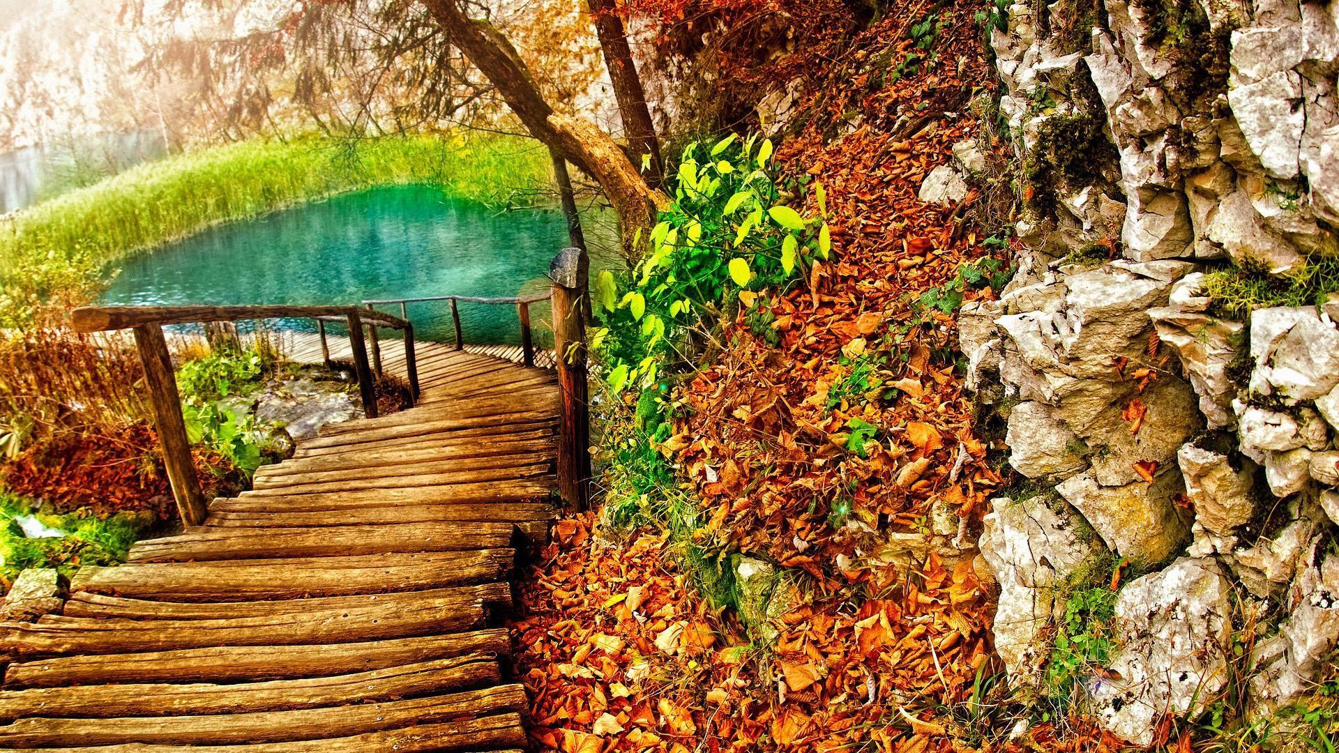 path wallpaper 7466