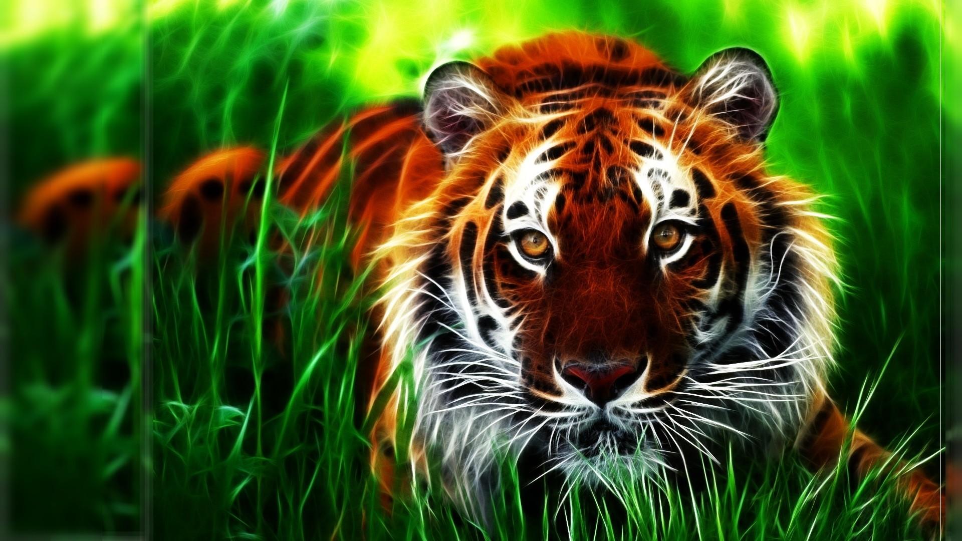 Free Clemson Tigers Wallpaper, 43 HD Clemson Tigers Wallpapers .