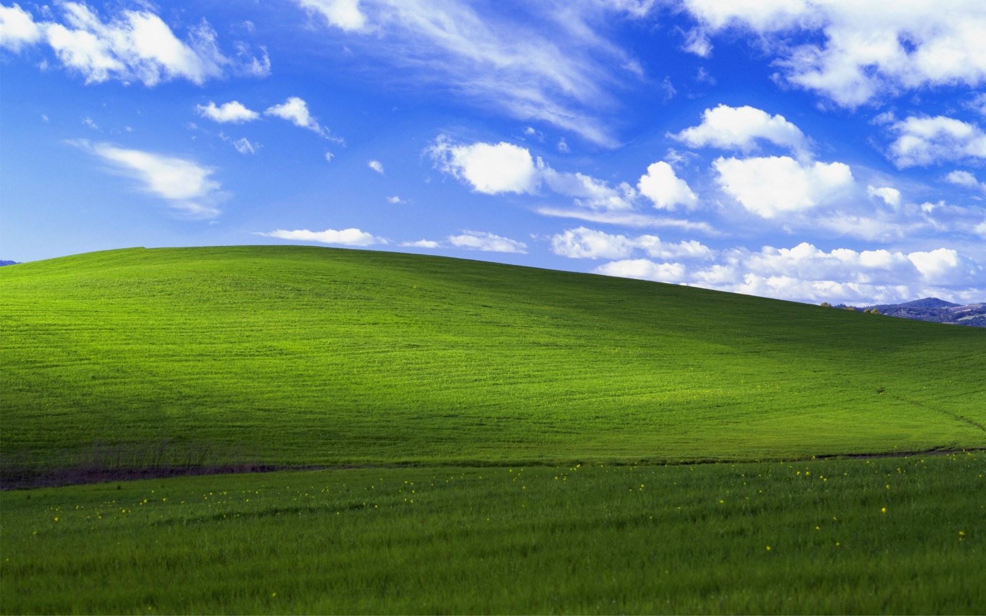 Windows Xp Bliss 423579