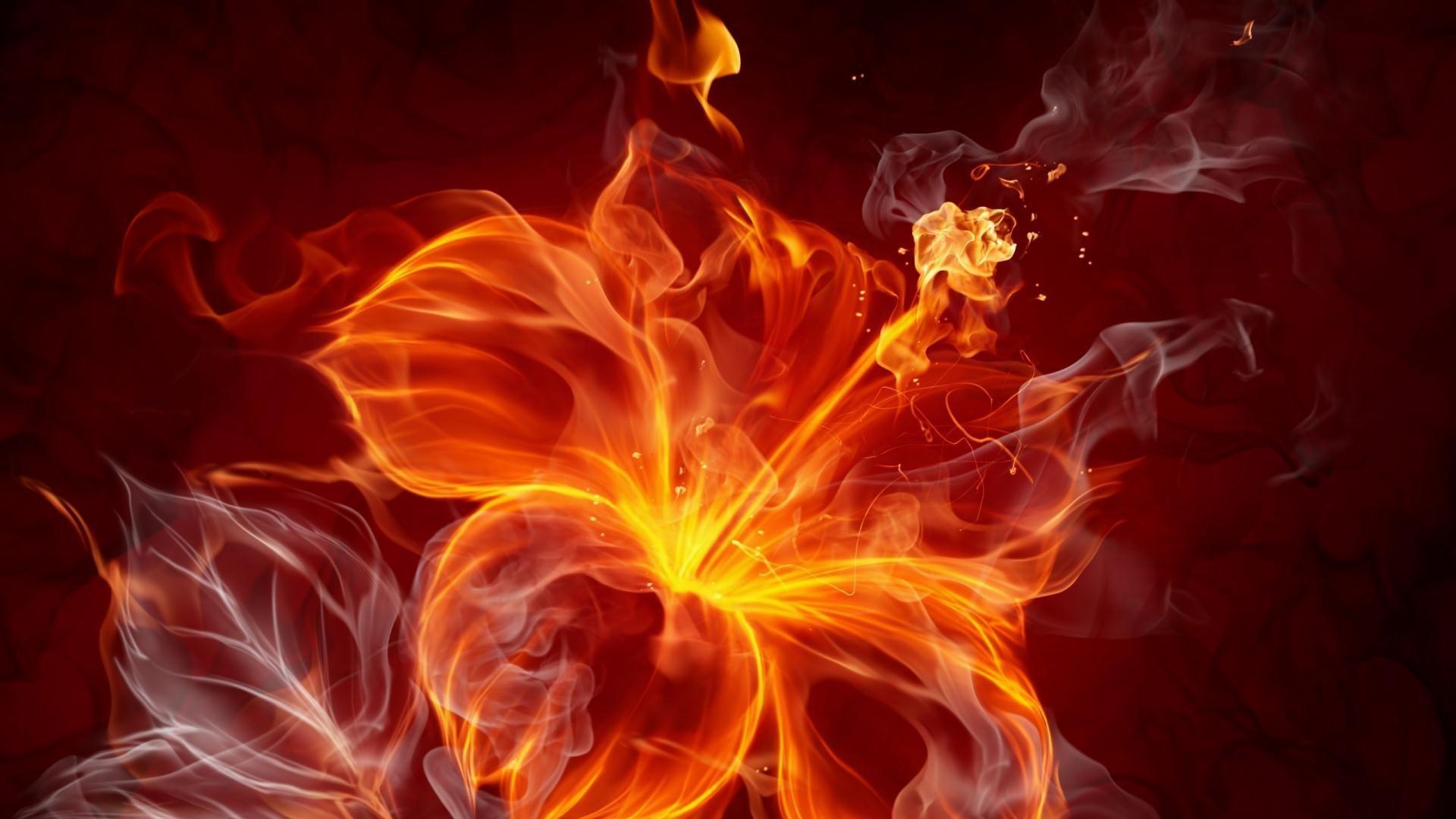 Flower-fire-wallpaper-HD-backgrounds