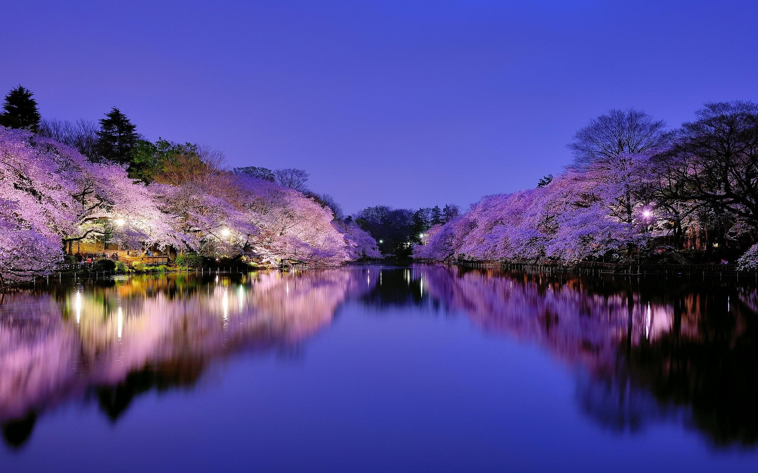 Japan Wallpapers | Best Wallpapers