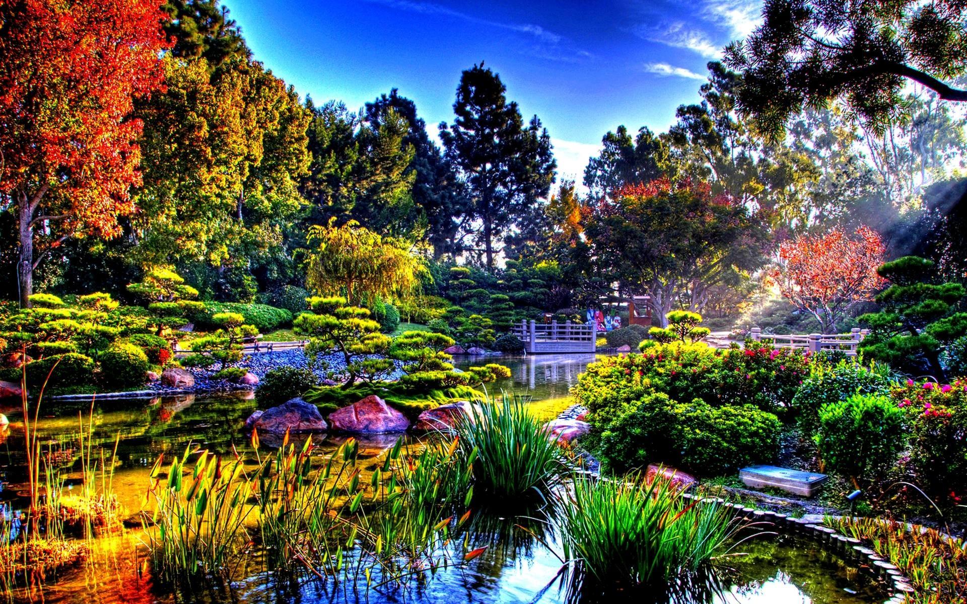 japanese-garden-15322.jpg