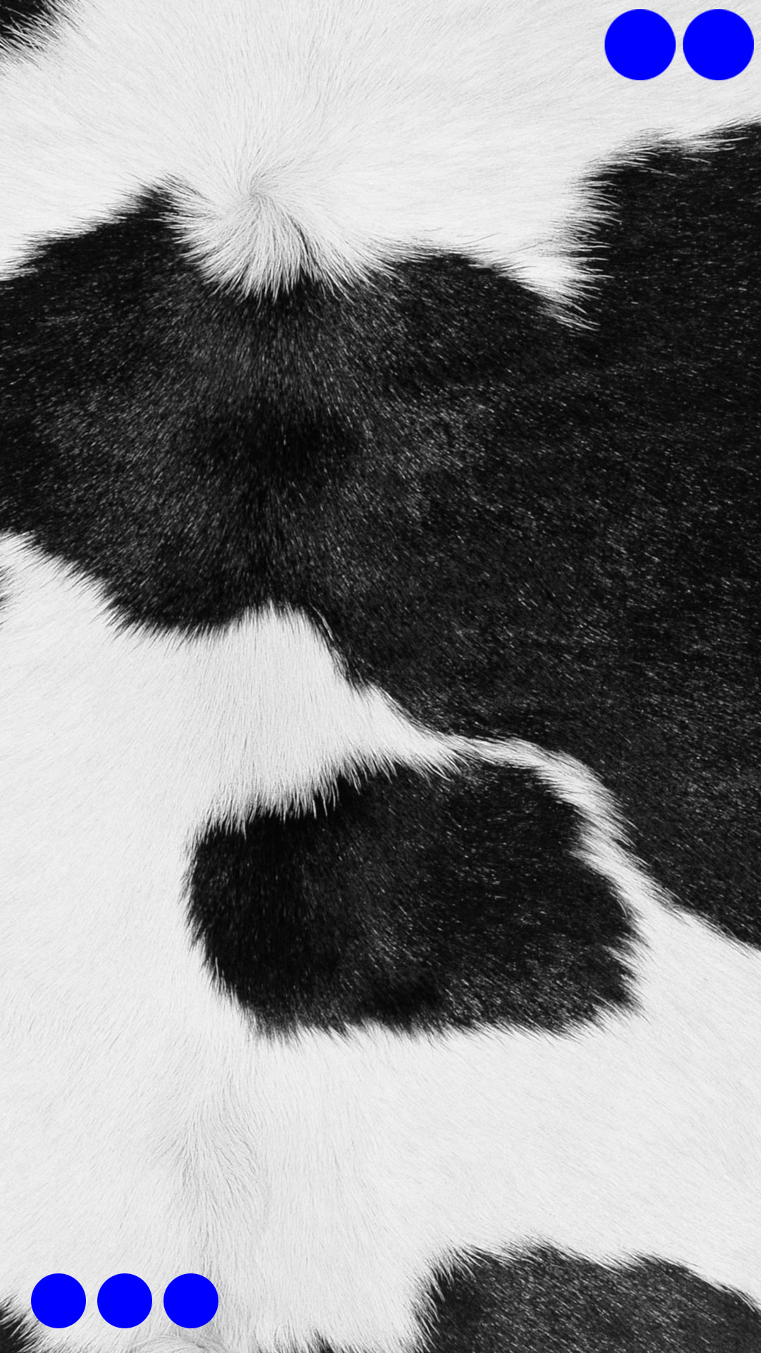 Fur Round Black and white red iPhone7 Plus Wallpaper
