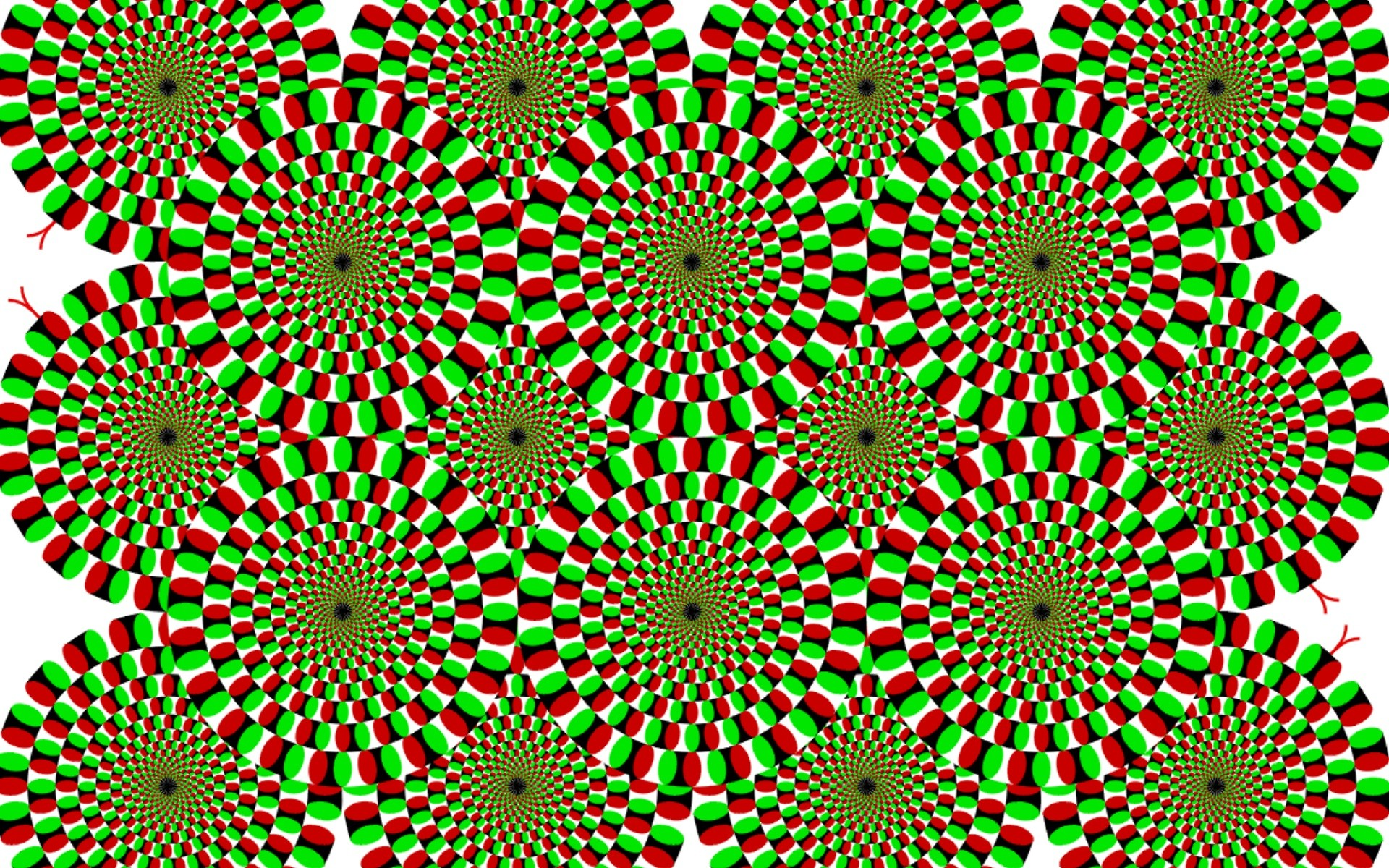 Illusion wallp Trippy Moving Backgrounds