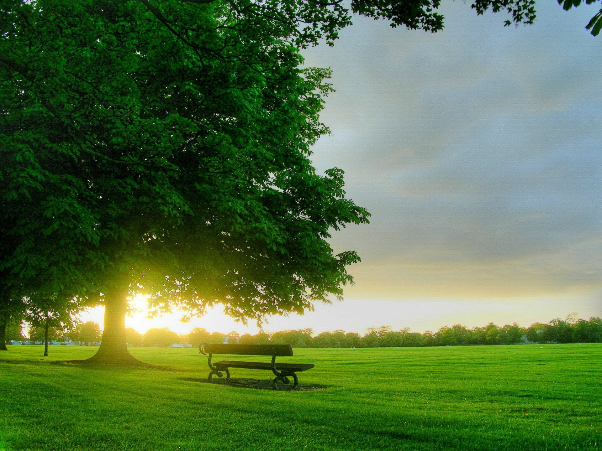 Morning Scenery HD Wallpapers: Find best latest Morning Scenery Wallpapers  in HD for your PC