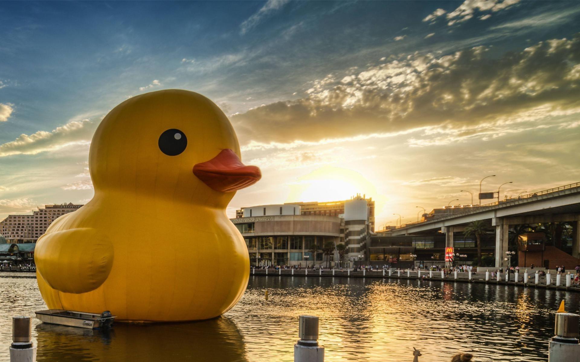 rubber Ducks, Landscape, Cityscape, Water Wallpapers HD / Desktop and  Mobile Backgrounds