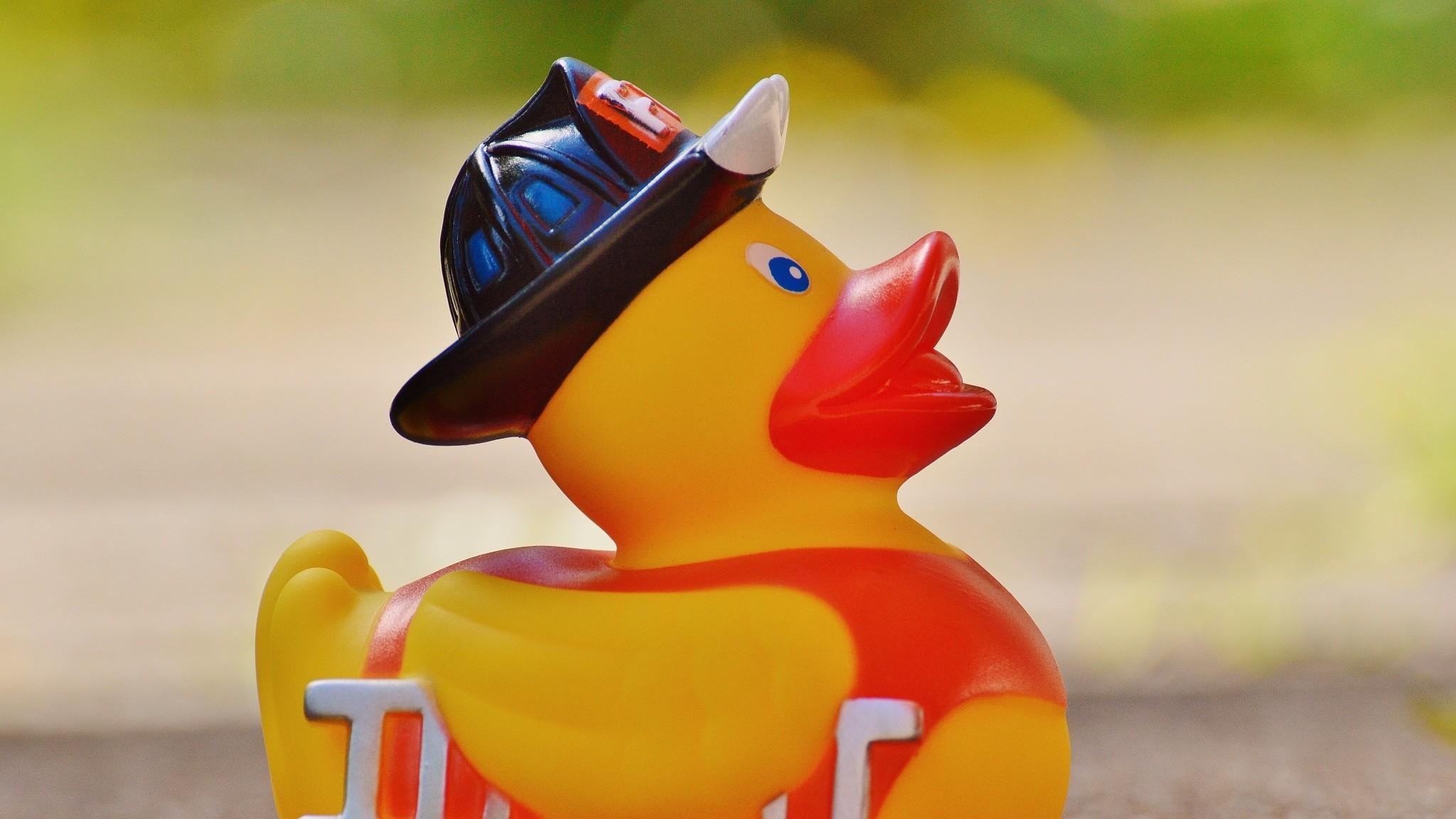 Wallpaper rubber duck, duck, toy