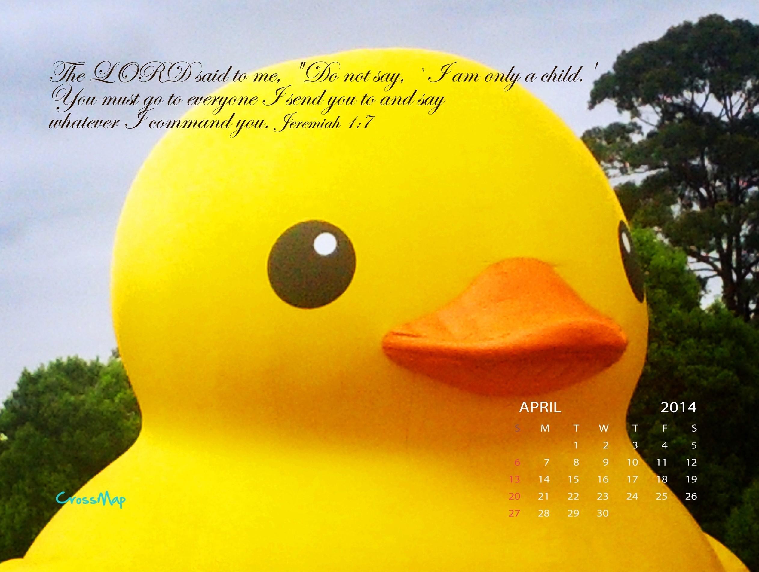 Yellow Rubber Duck 2014 Calendar Wallpaper – April