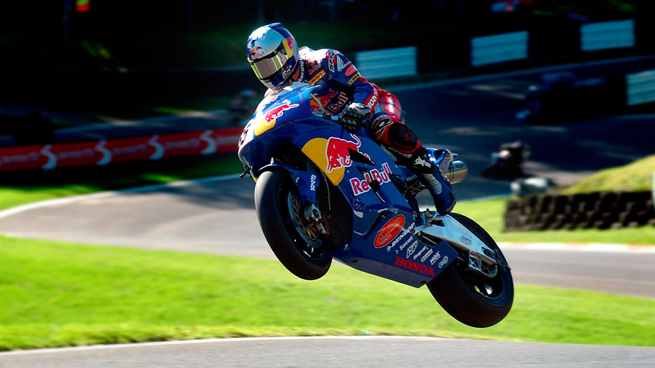 Honda Red Bull Moto GP for 2560×1440
