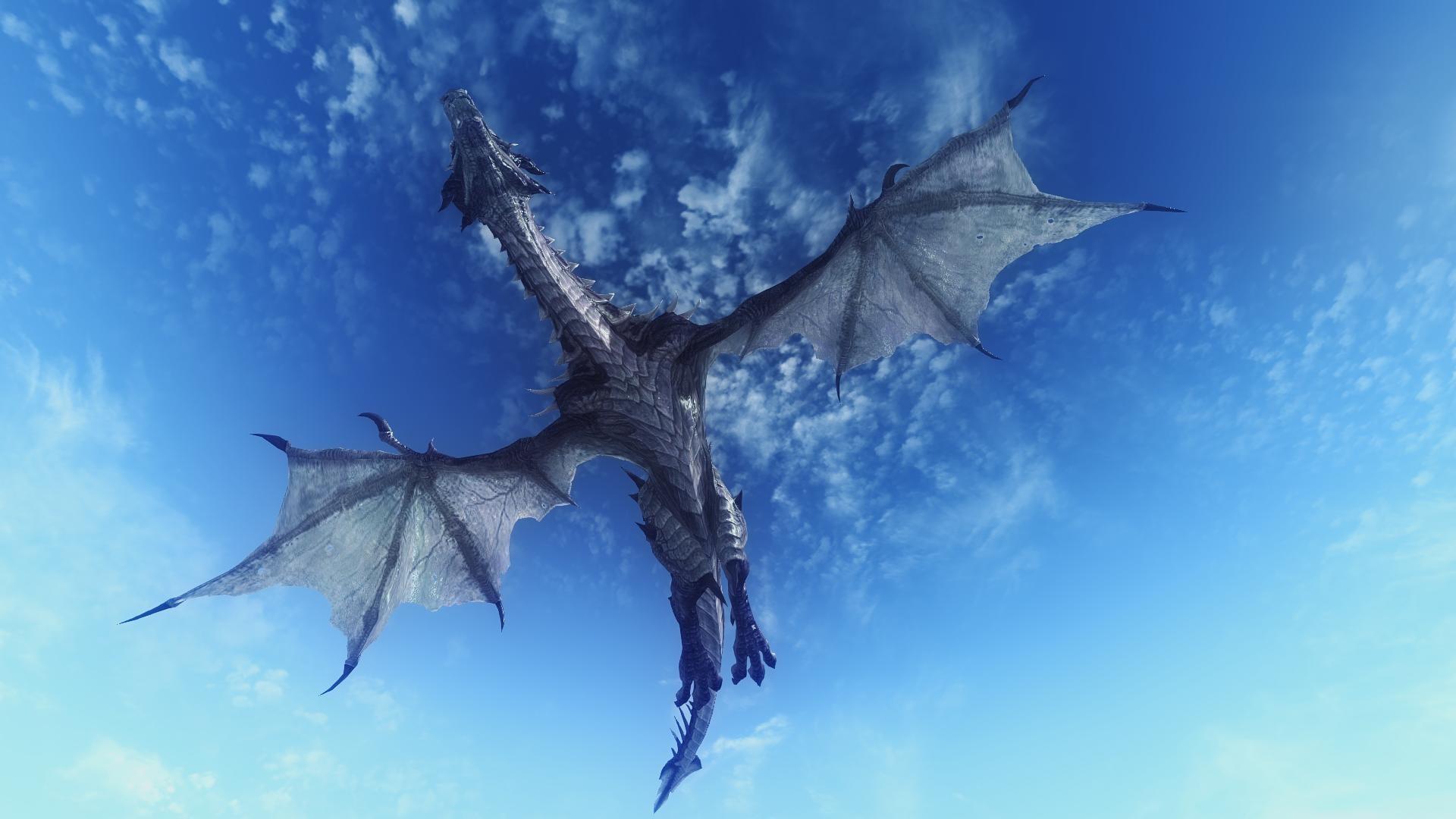 Wallpaper dragon, sky, flying, 3d