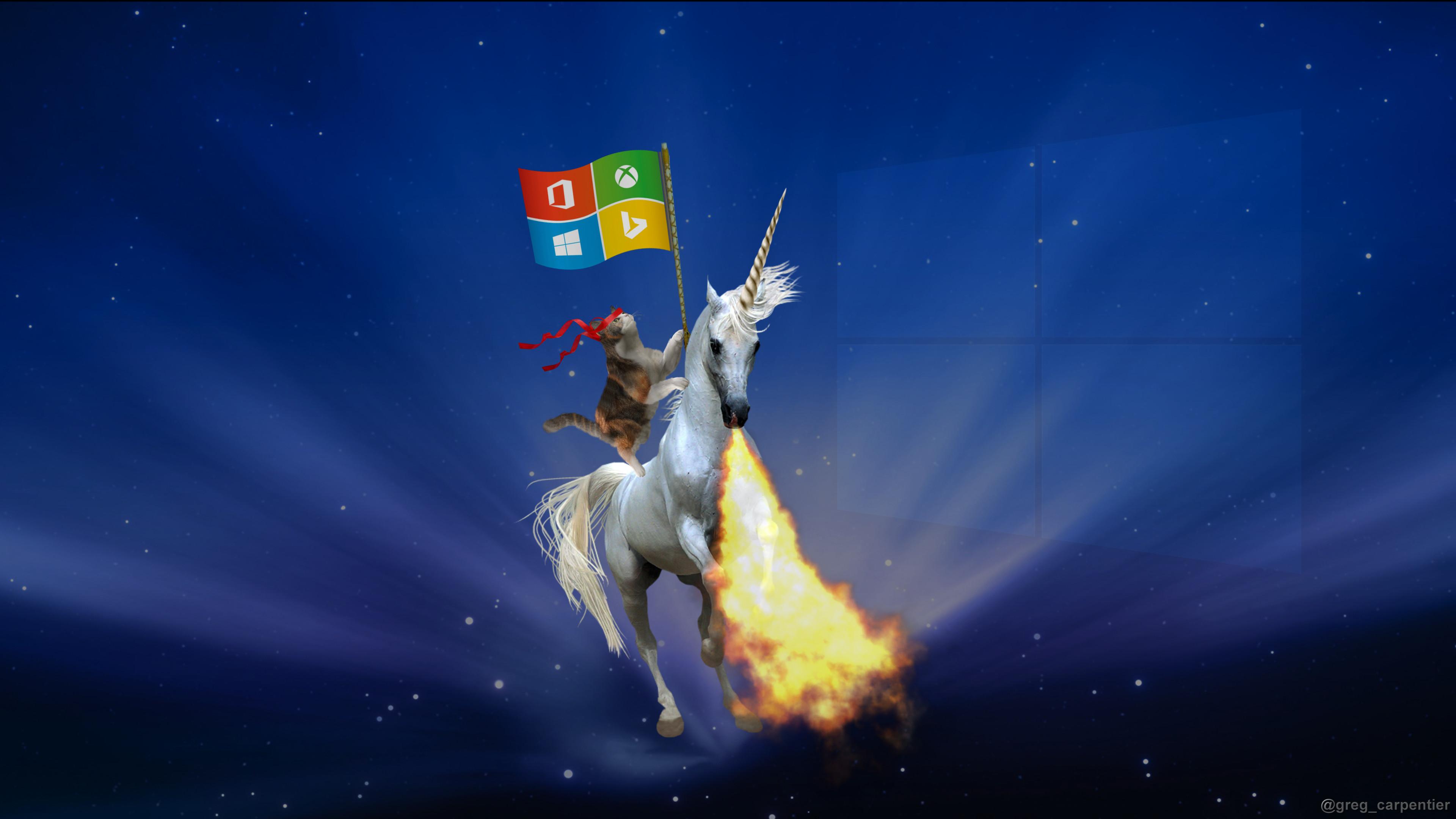 02. Riding and breathing fire… Ninja Cat & Fire Breathing Unicorn | 10 Cool  Windows Ninja Cat Wallpaper