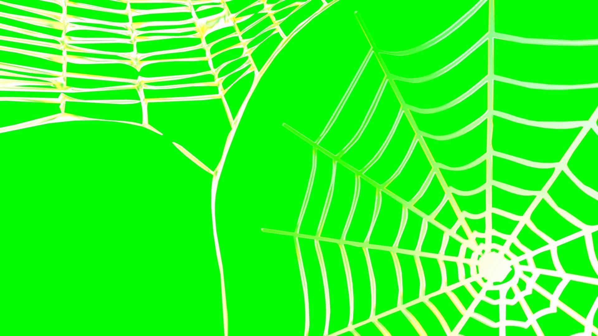 4K Spider Web Rotating Background Animation