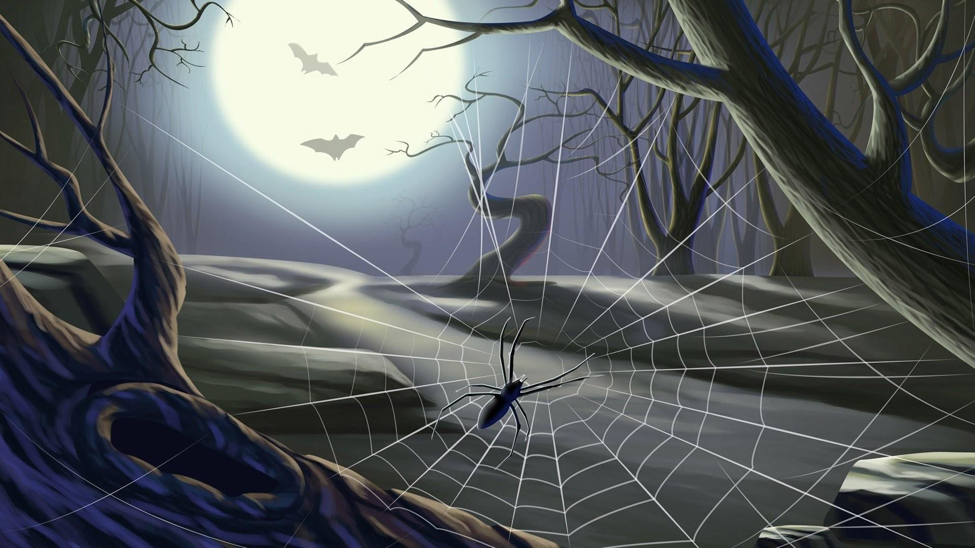 Halloween Spider Web Wallpaper 751865 – WallDevil. Halloween Spider Web  Wallpaper 751865 WallDevil
