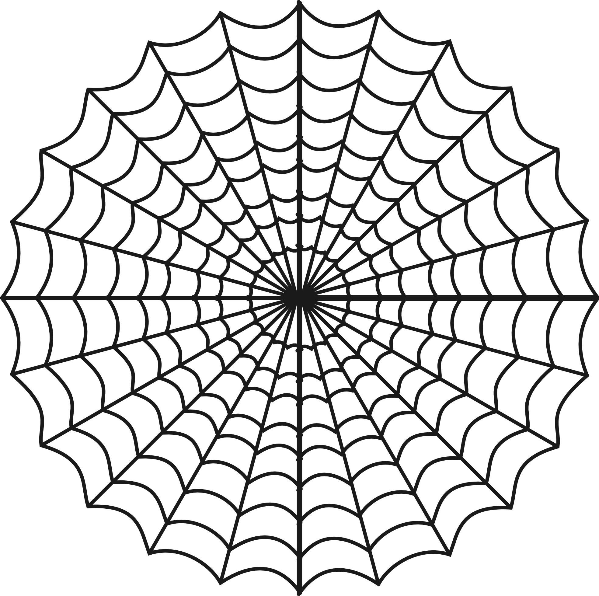 Spider Web Transparent Png image #34730
