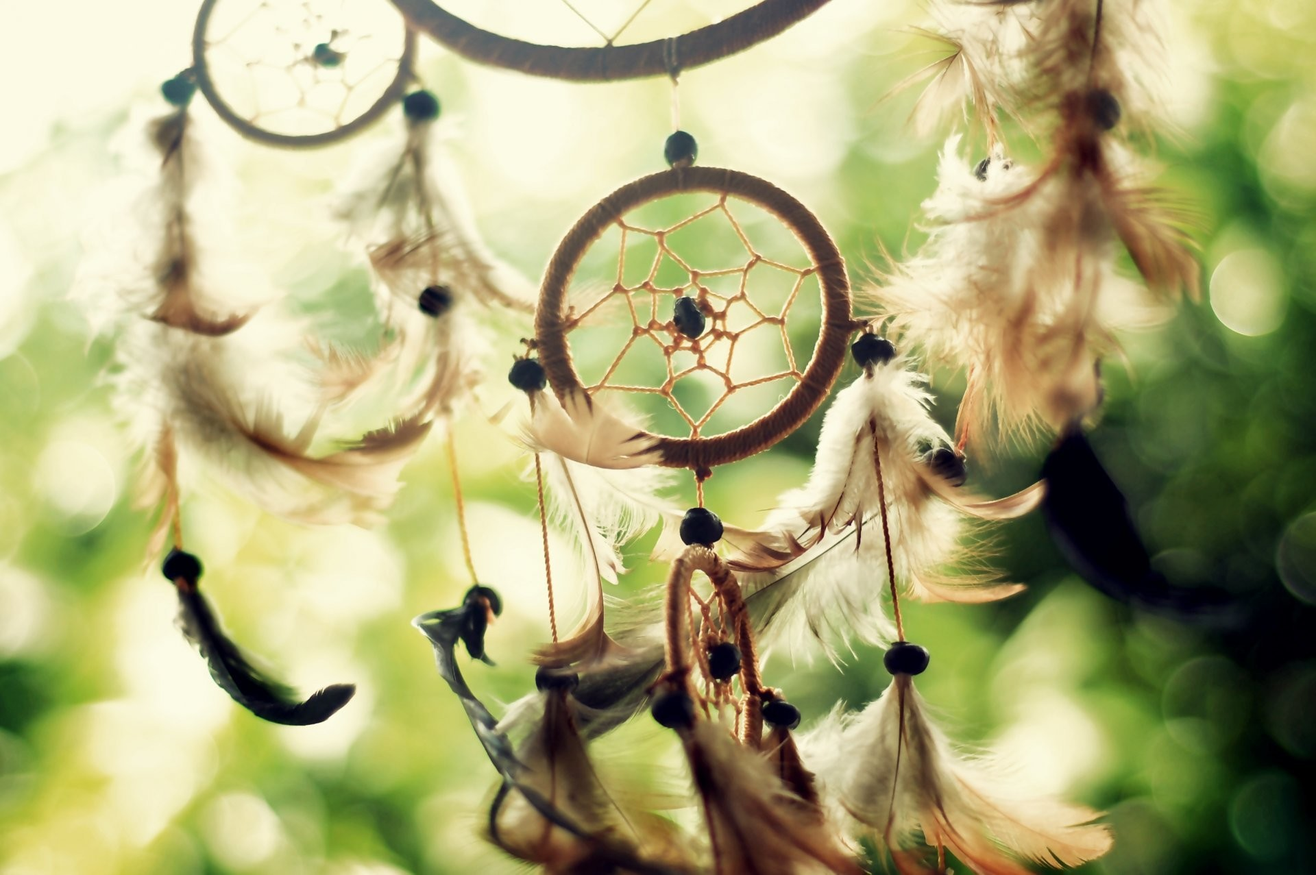 dreamcatcher dreamcatcher sun light