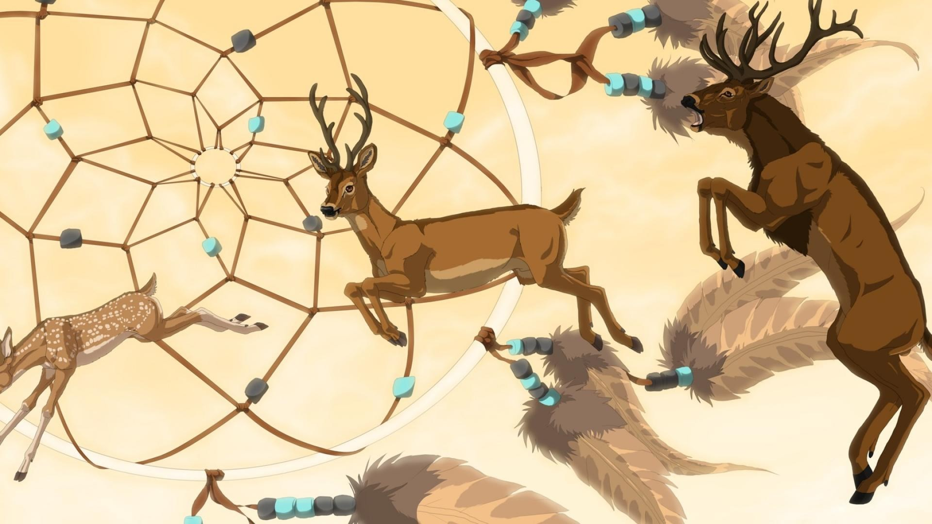art dream catcher feathers deer animals horn hd wallpaper
