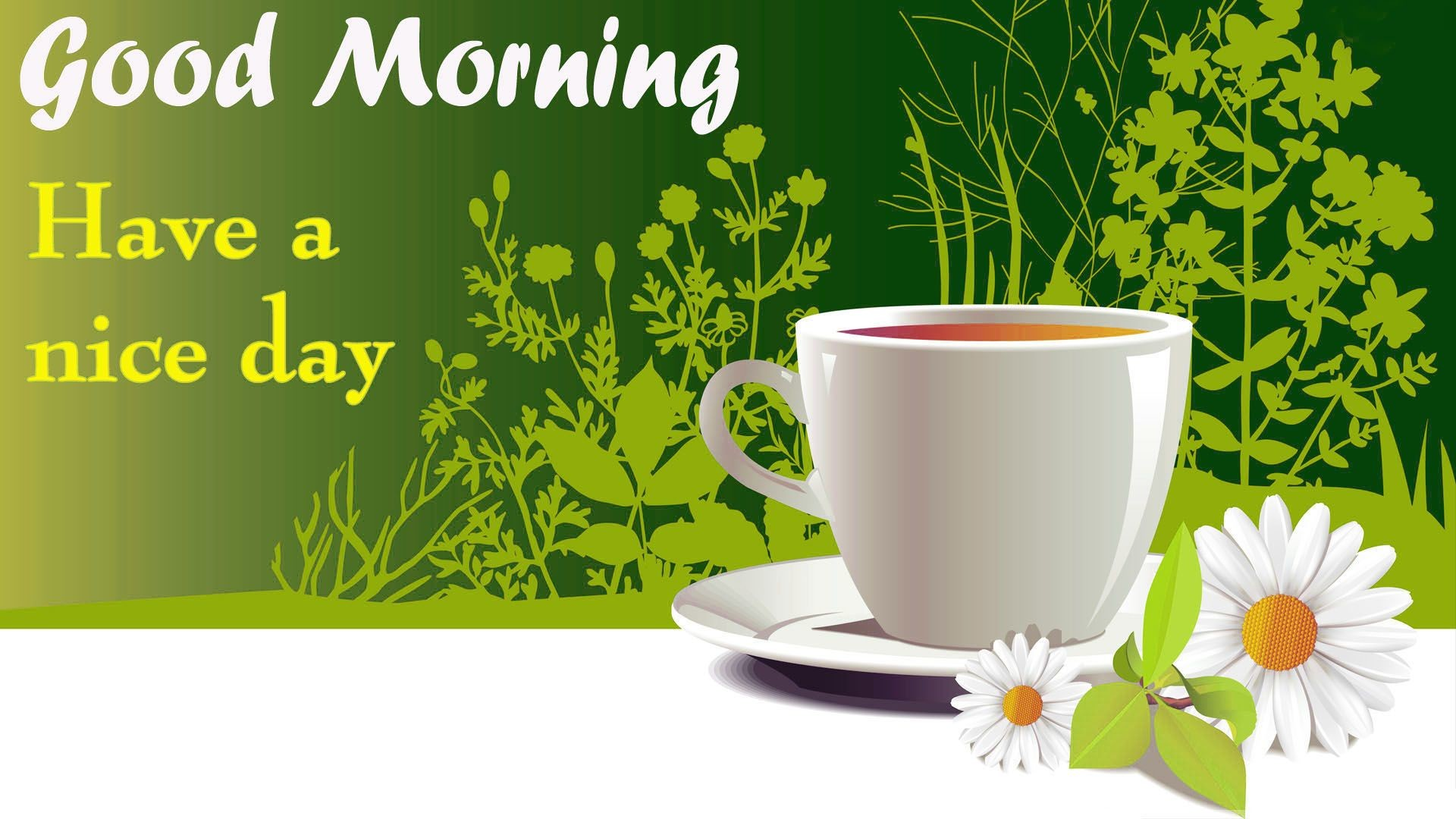 Wallpapers For Good Morning – Wallpaper Cave