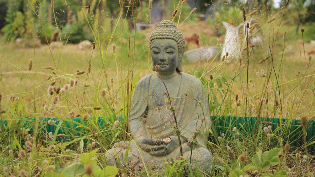 Wallpaper buddha, buddhism, meditation, grass