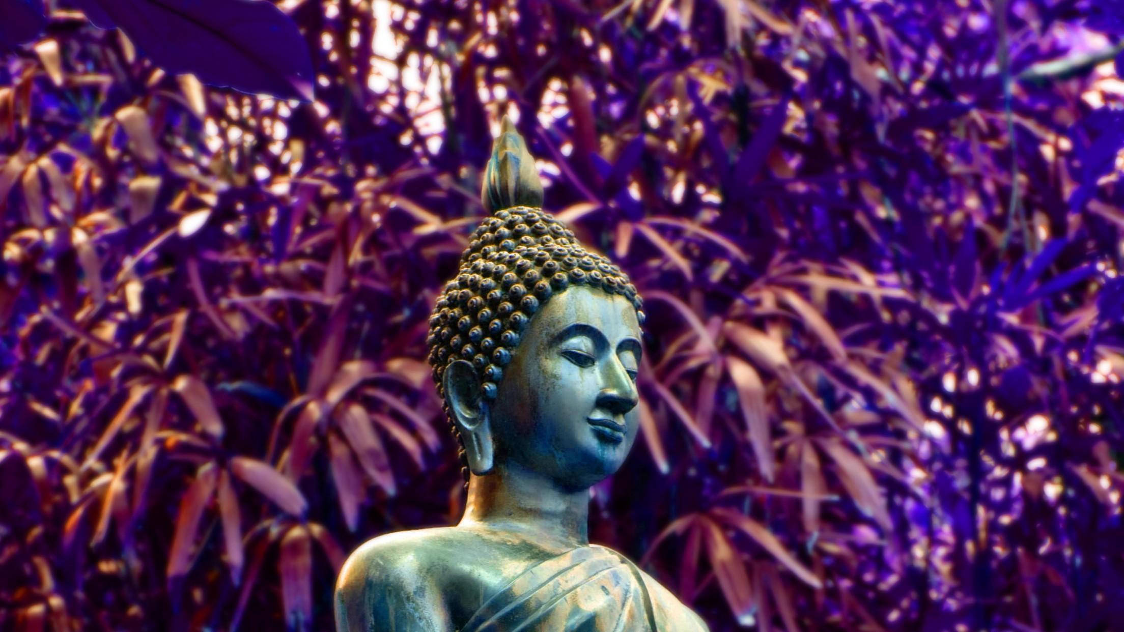 Buddha Statue Lyon Arboretum Hawai Hd Wallpapres