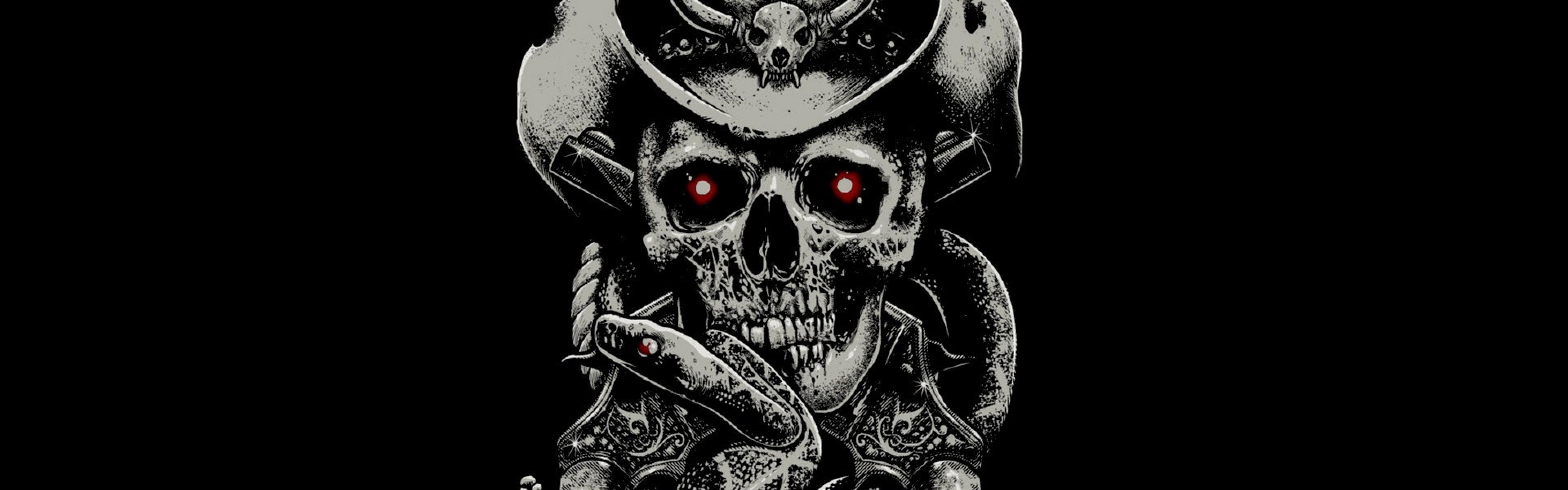 Preview wallpaper skull, fear, hat, guns, snake, background 3840×1200