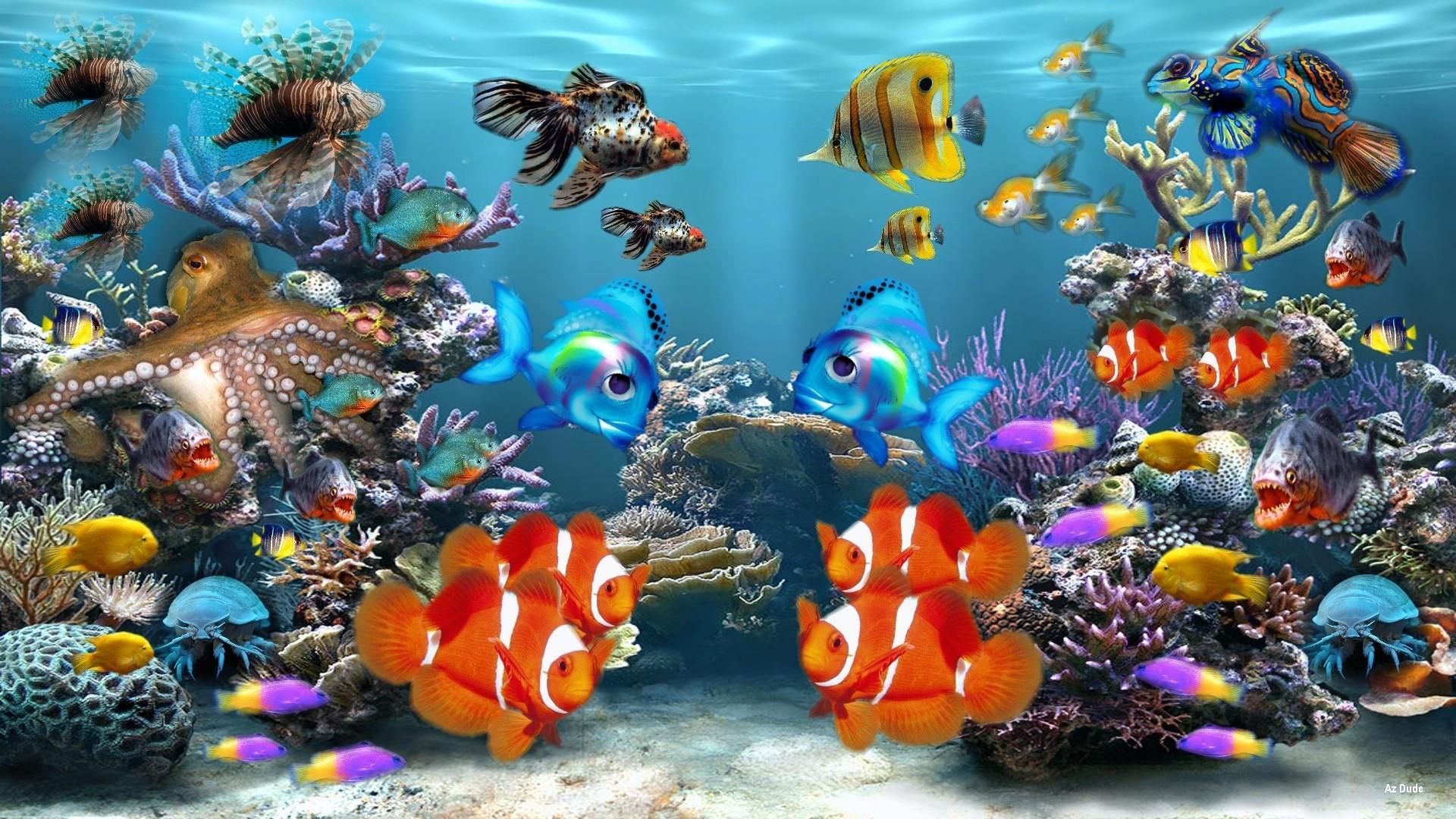 Fonds d'écran Aquarium PC et Tablettes (iPad, etc…)