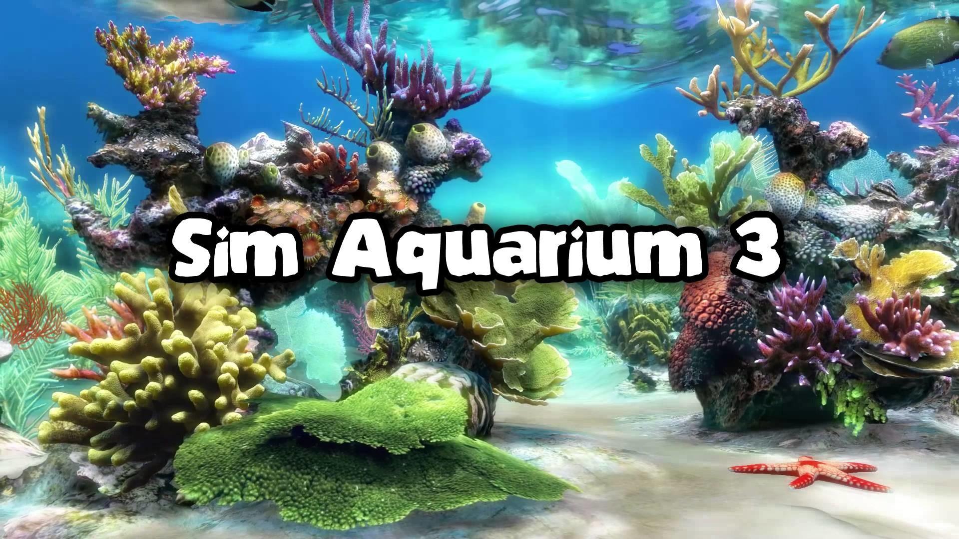 Aquarium Software on PC – My top 5