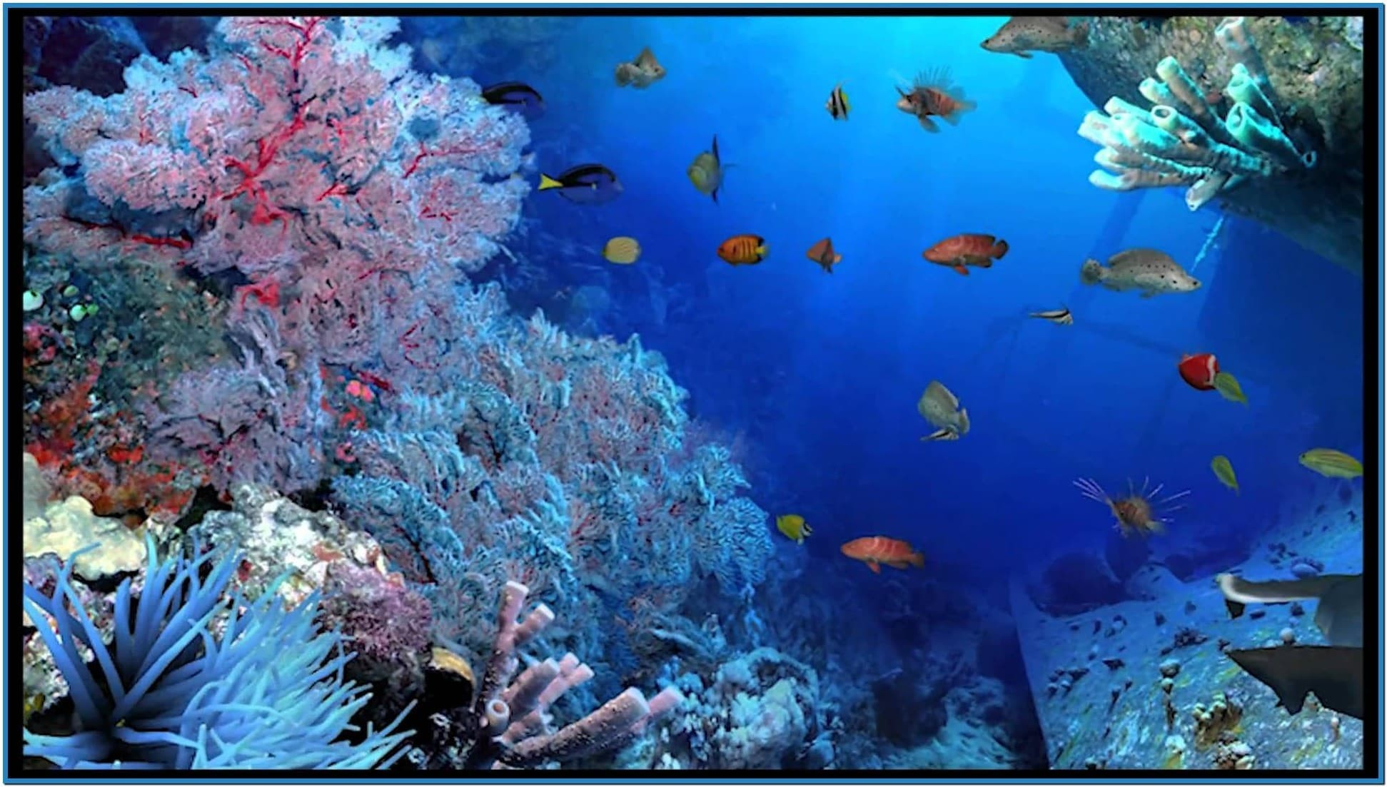 51 Aquarium Live Wallpaper For Pc