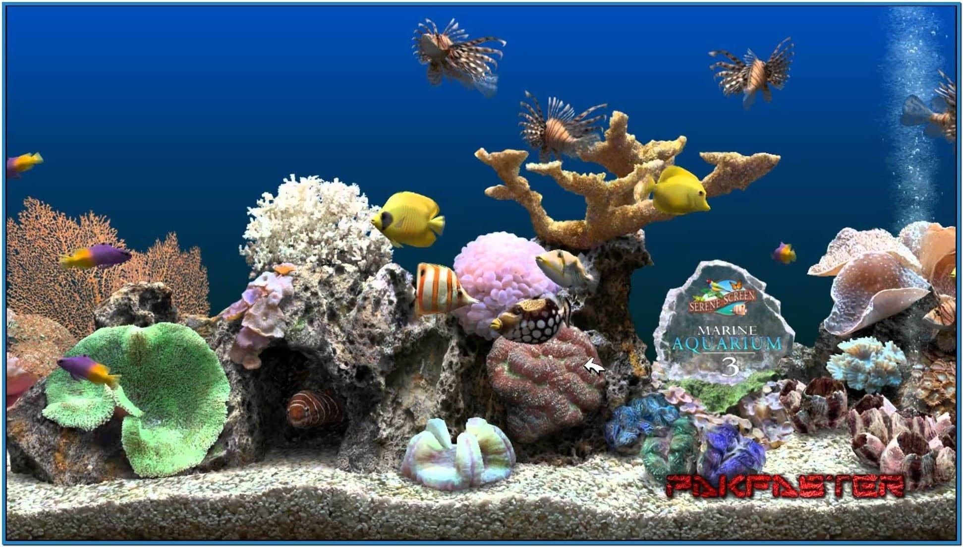 Screensaver marine aquarium deluxe 3.2 – Download free
