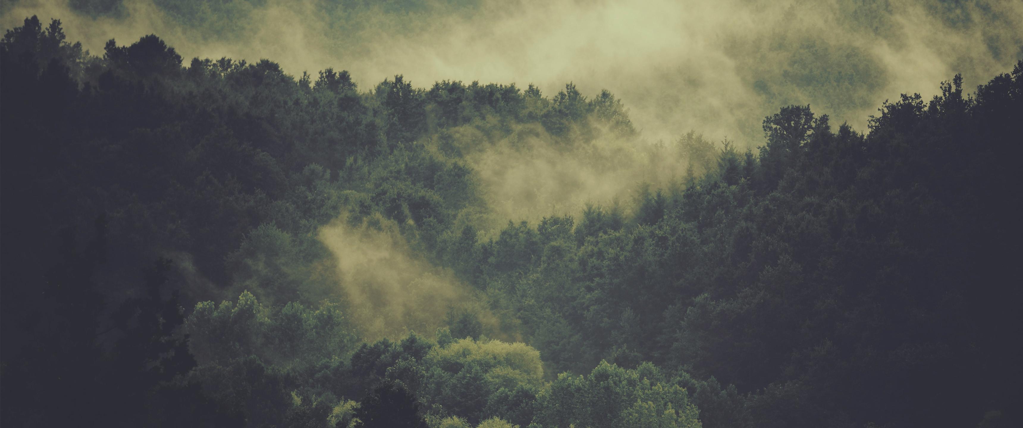 Hovering Fog – 21:9 Ultrawide HD Wallpaper (3440×1440)