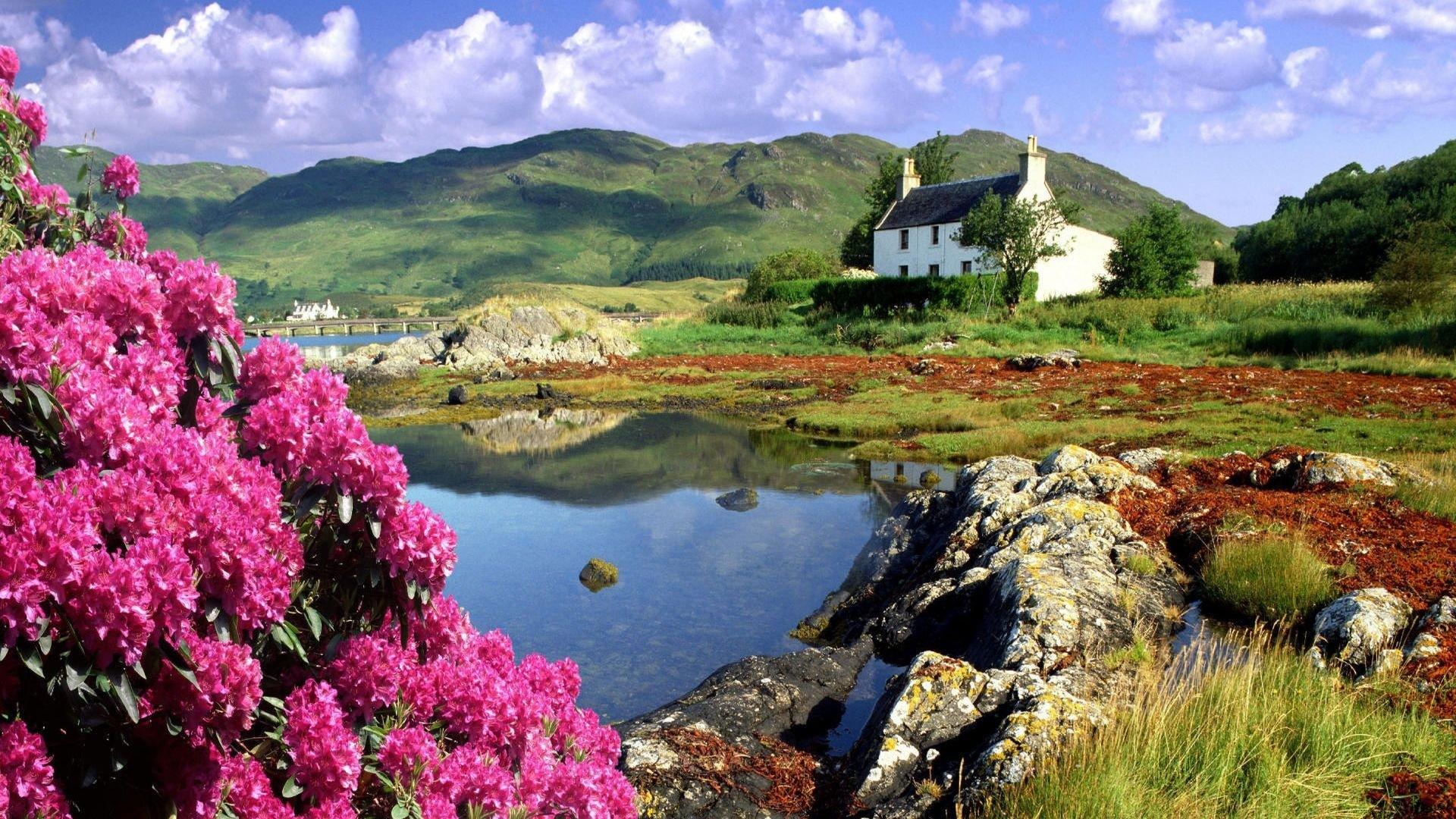 Preview wallpaper scotland, coast, cottage, flowers, mountains 1920×1080
