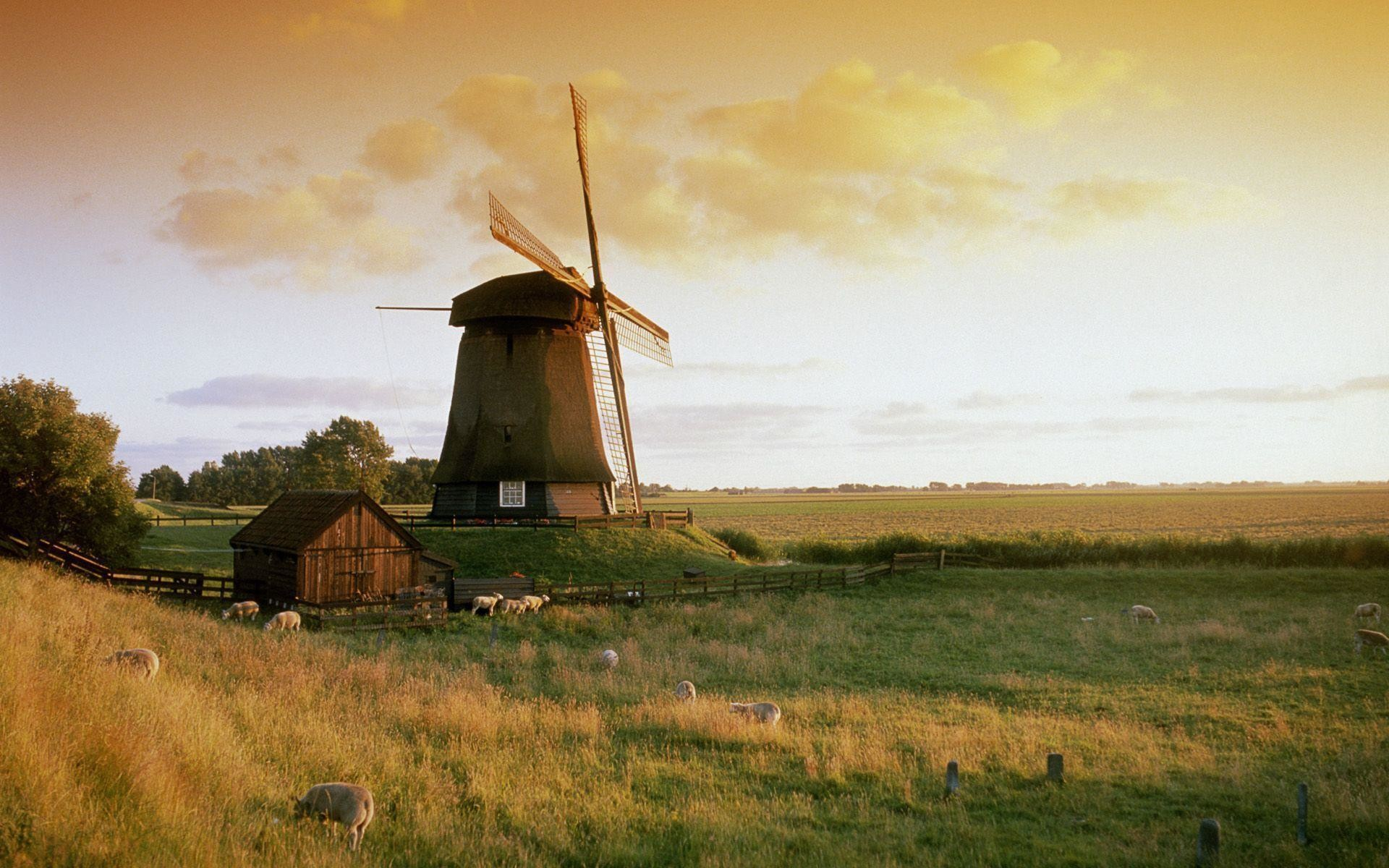 Wallpapers For > Dutch Windmill Wallpaper