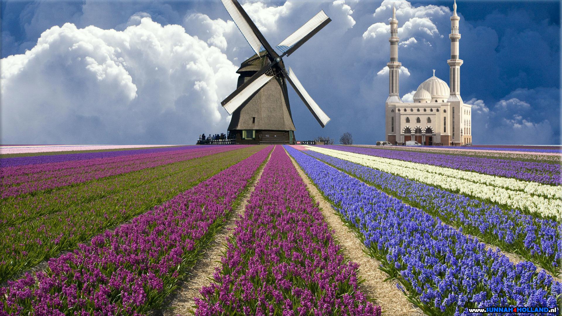 Dutch Windmill Wallpaper – WallpaperSafari