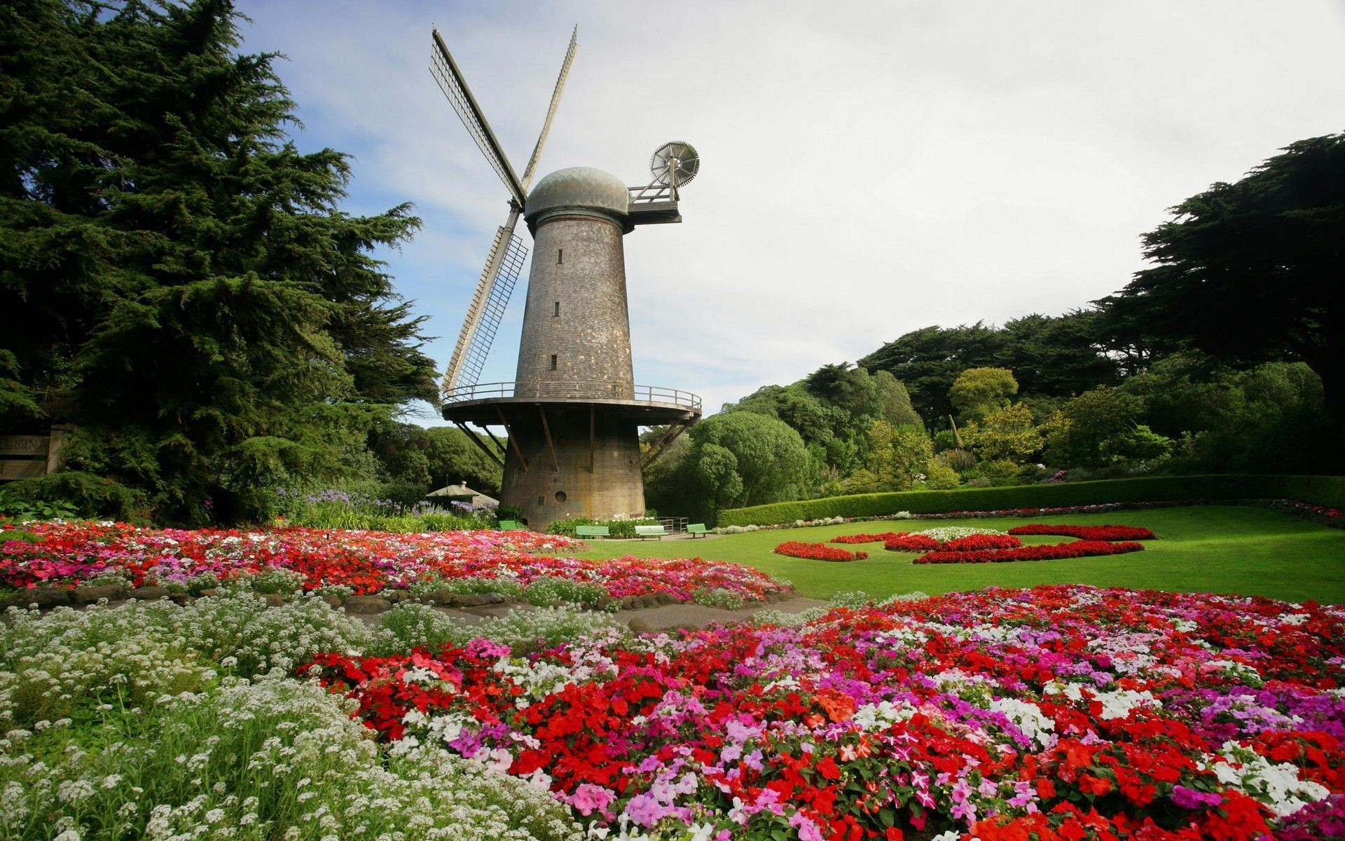 North Dutch Windmill and Queen Wilhelmina Tulip Gardens, Golden Gate Park,  San Francisco, California Widescreen Wallpaper