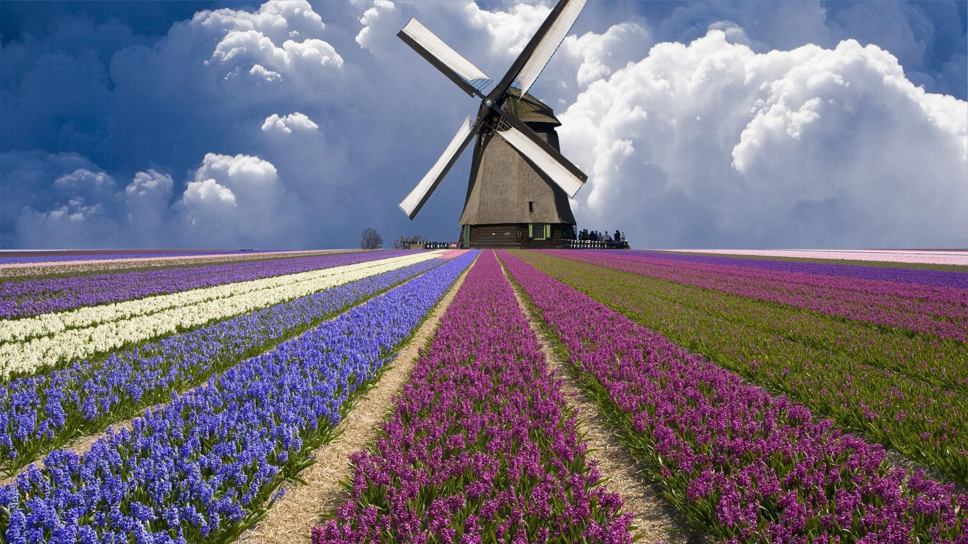 Windmill Computer Wallpapers, Desktop Backgrounds   2048×1365   ID …    Windmills   Pinterest