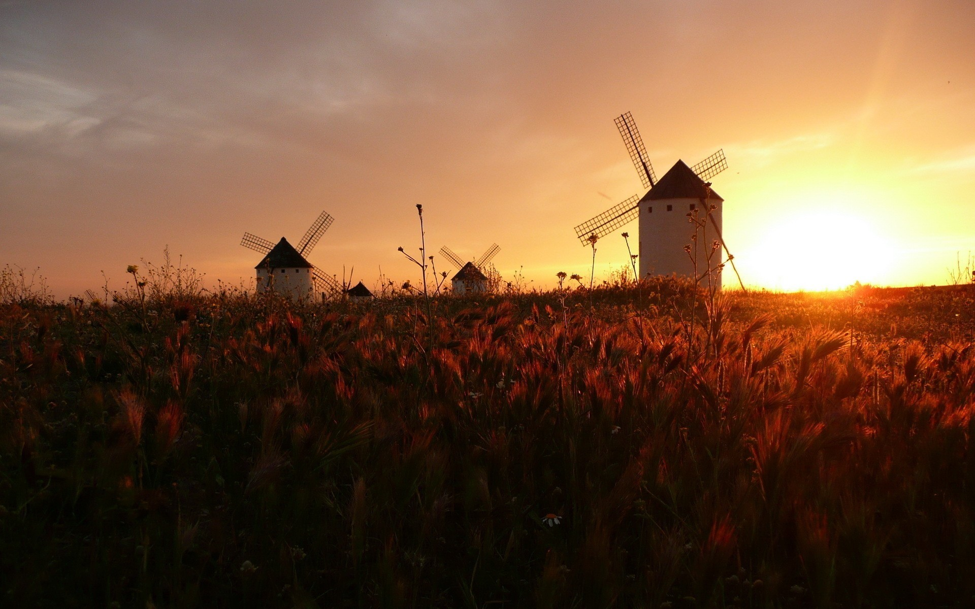 Greens Windmill   Industrial Architecture   Pinterest   Wallpapers .