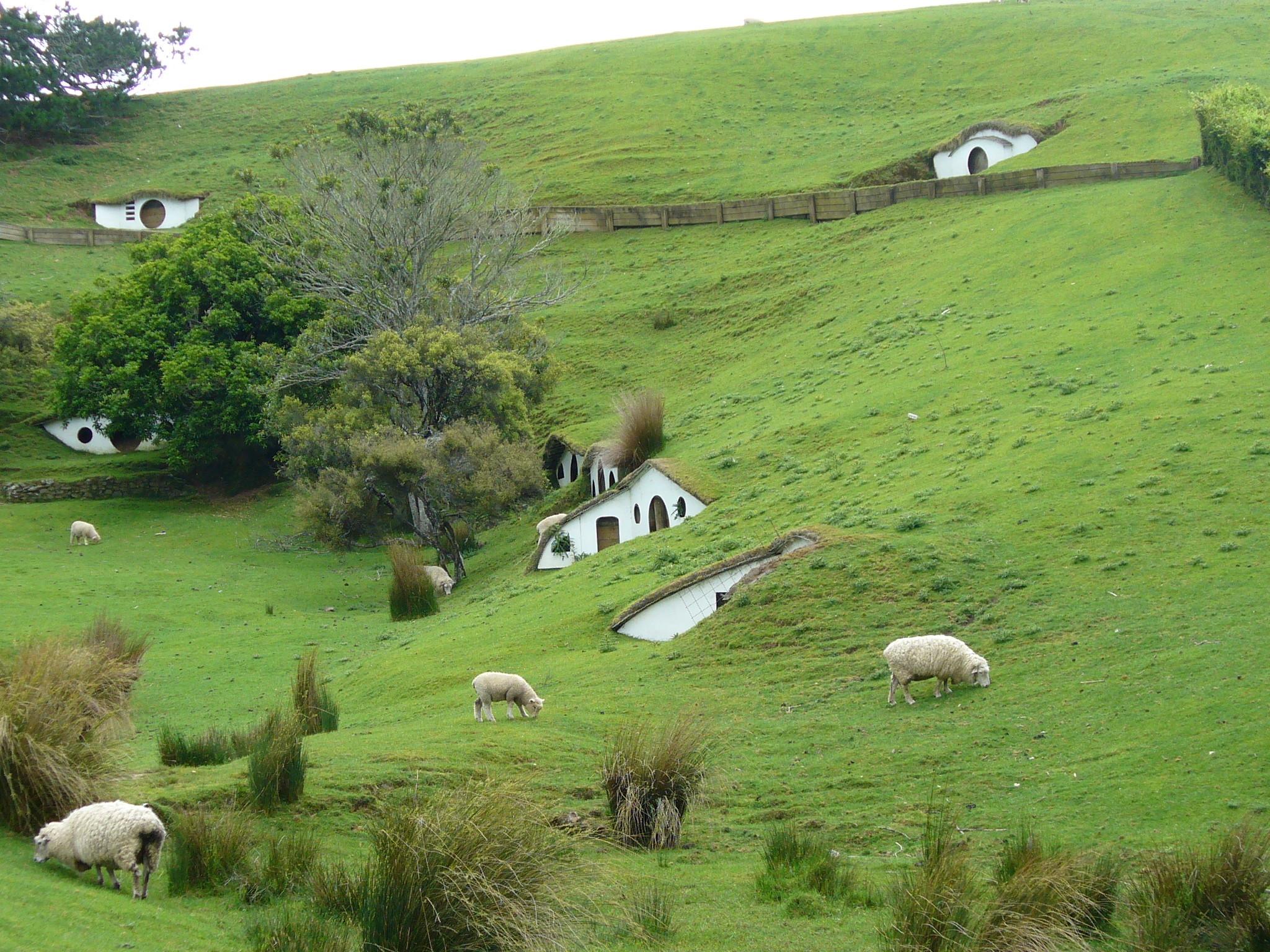 Hobbit holes and sheep
