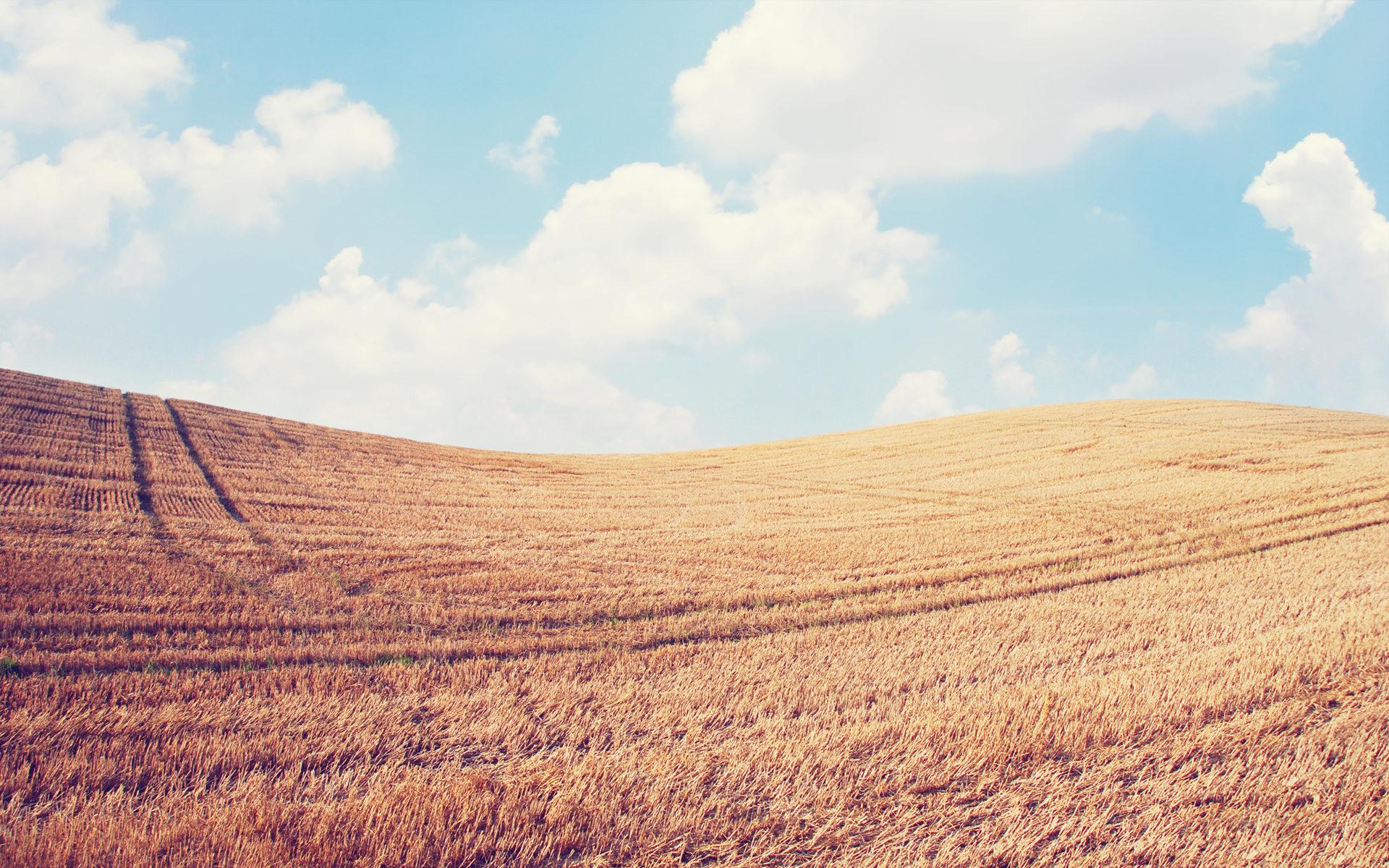 Farmyard Background Hd Related Keywords & Suggestions .