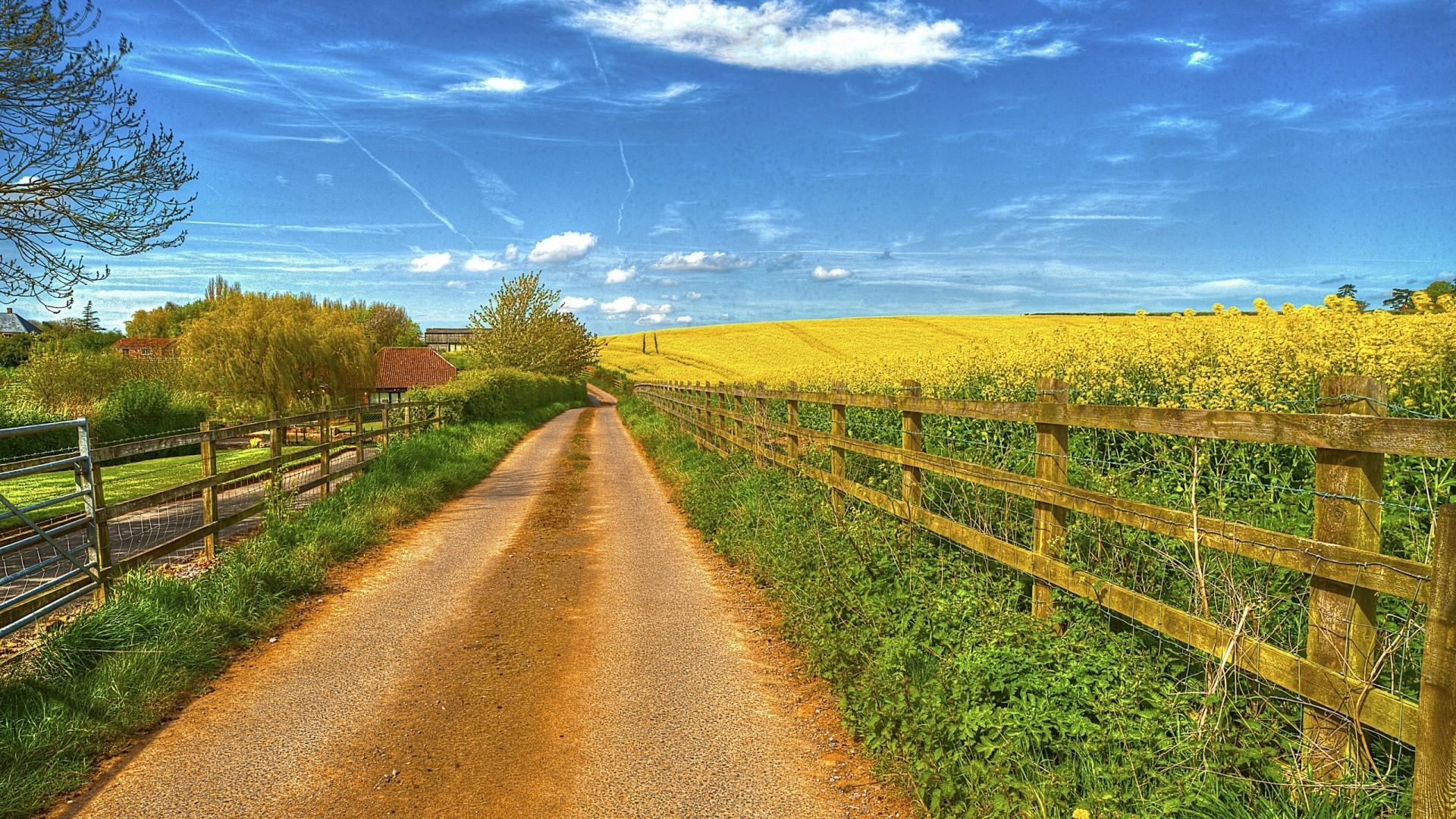 Village Road Farm Fencing Wallpaper