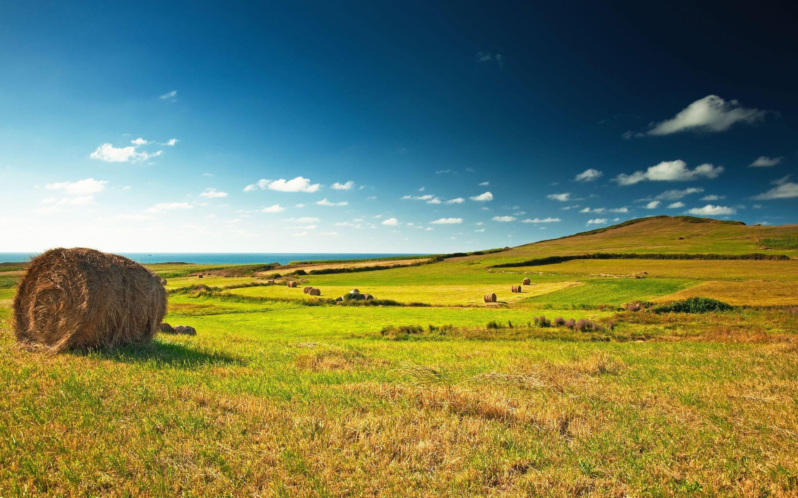 Landscapes Skylines Fields Farms Desktop Background Images