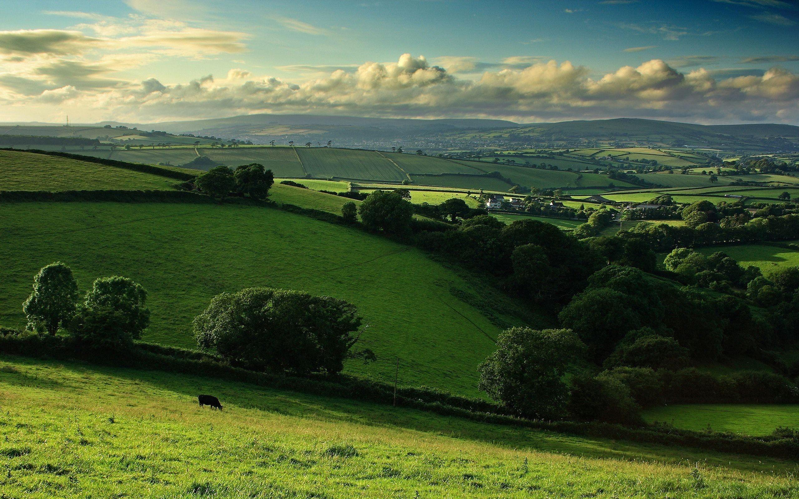 Farm Field Aerial View HD Wallpaper