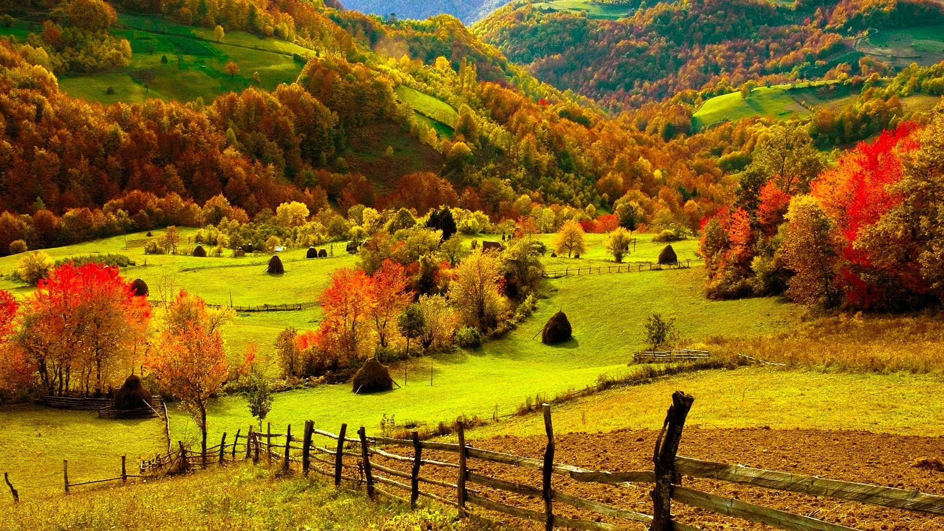 fall wallpapers farm