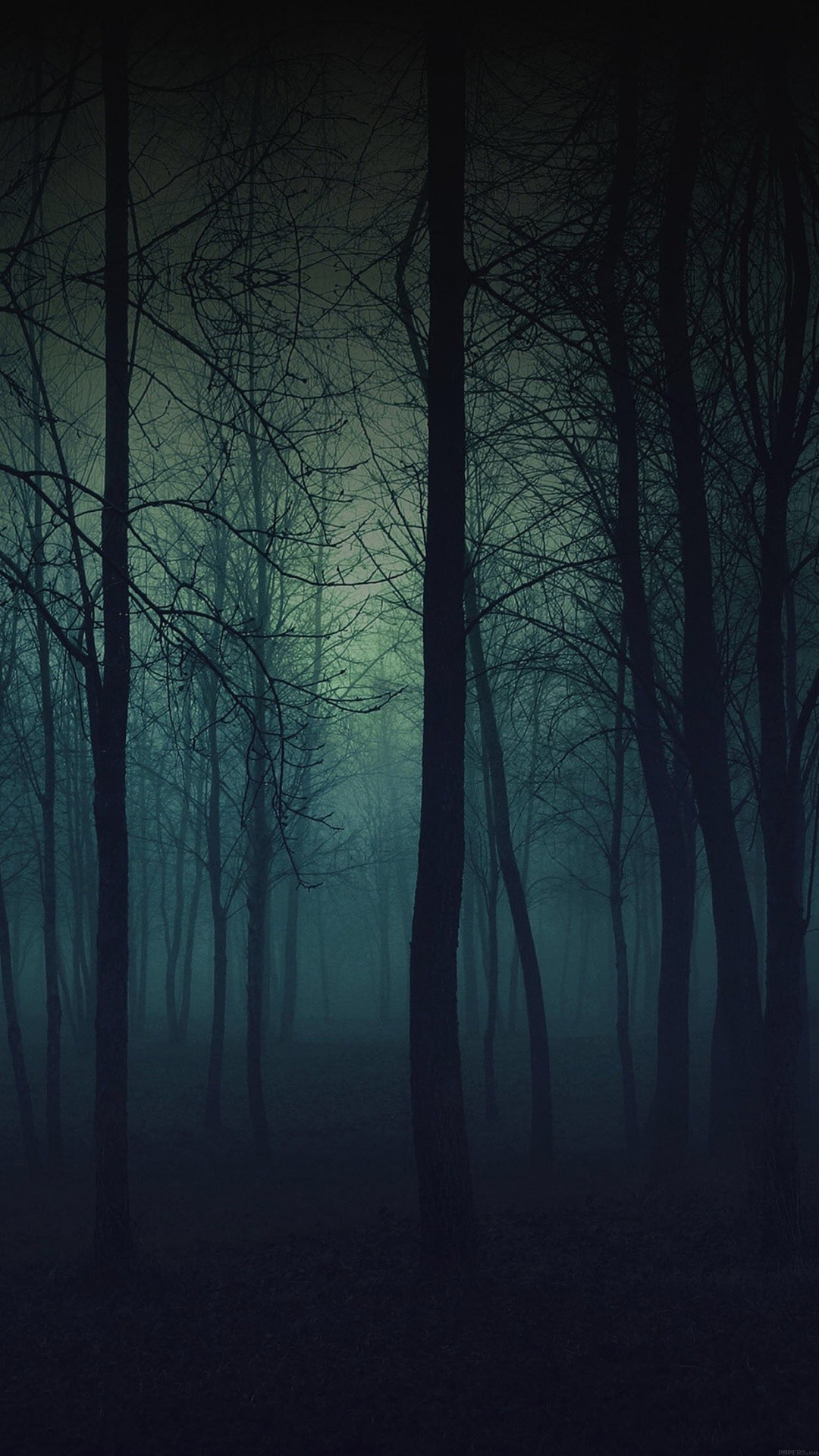 Eerie Forest Night iPhone 6 Plus HD Wallpaper …