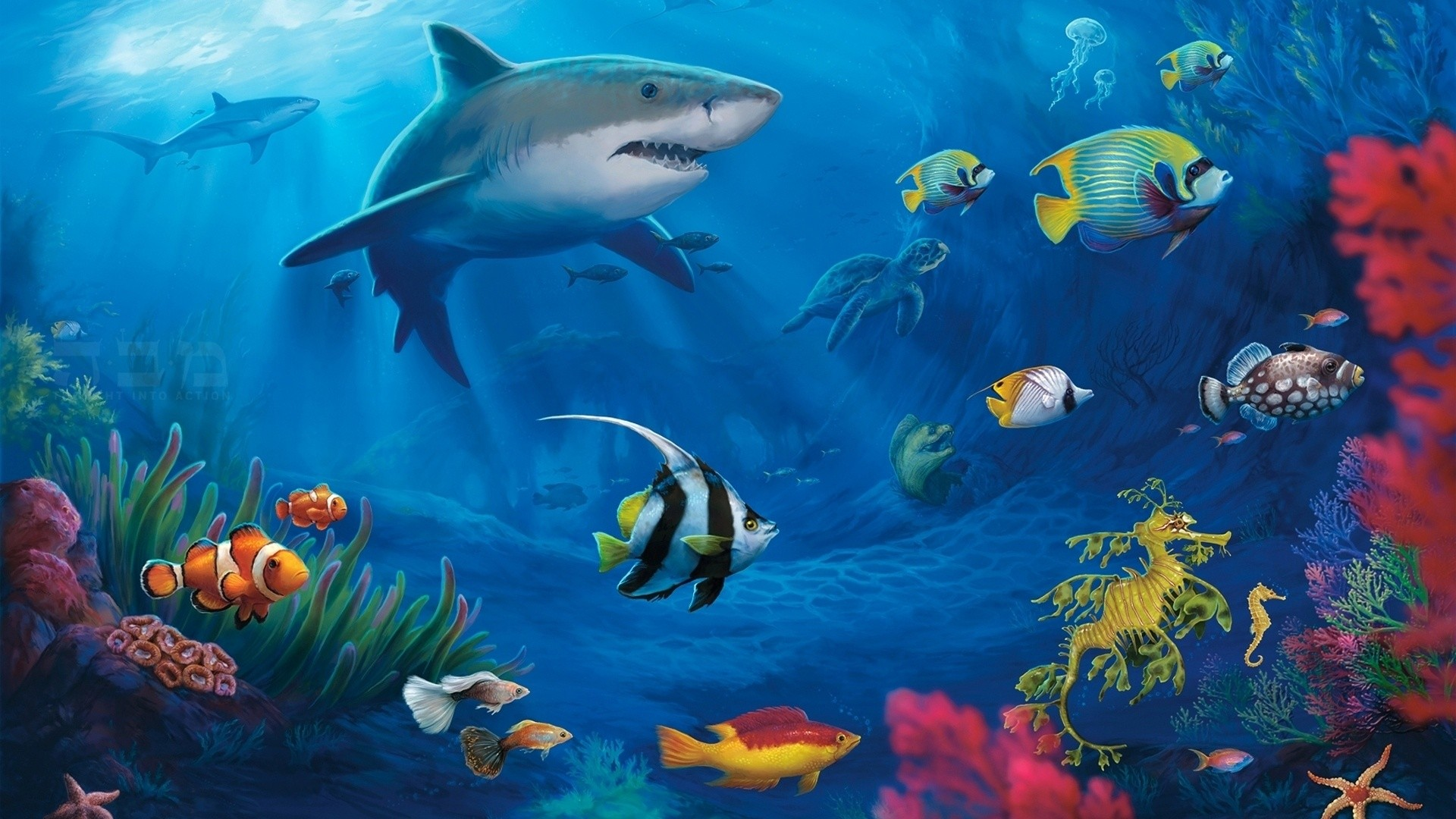 Best aquarium and fish live wallpapers for Android – Android Authority |  Epic Car Wallpapers | Pinterest | Live wallpapers, Wallpaper and Wallpapers  android